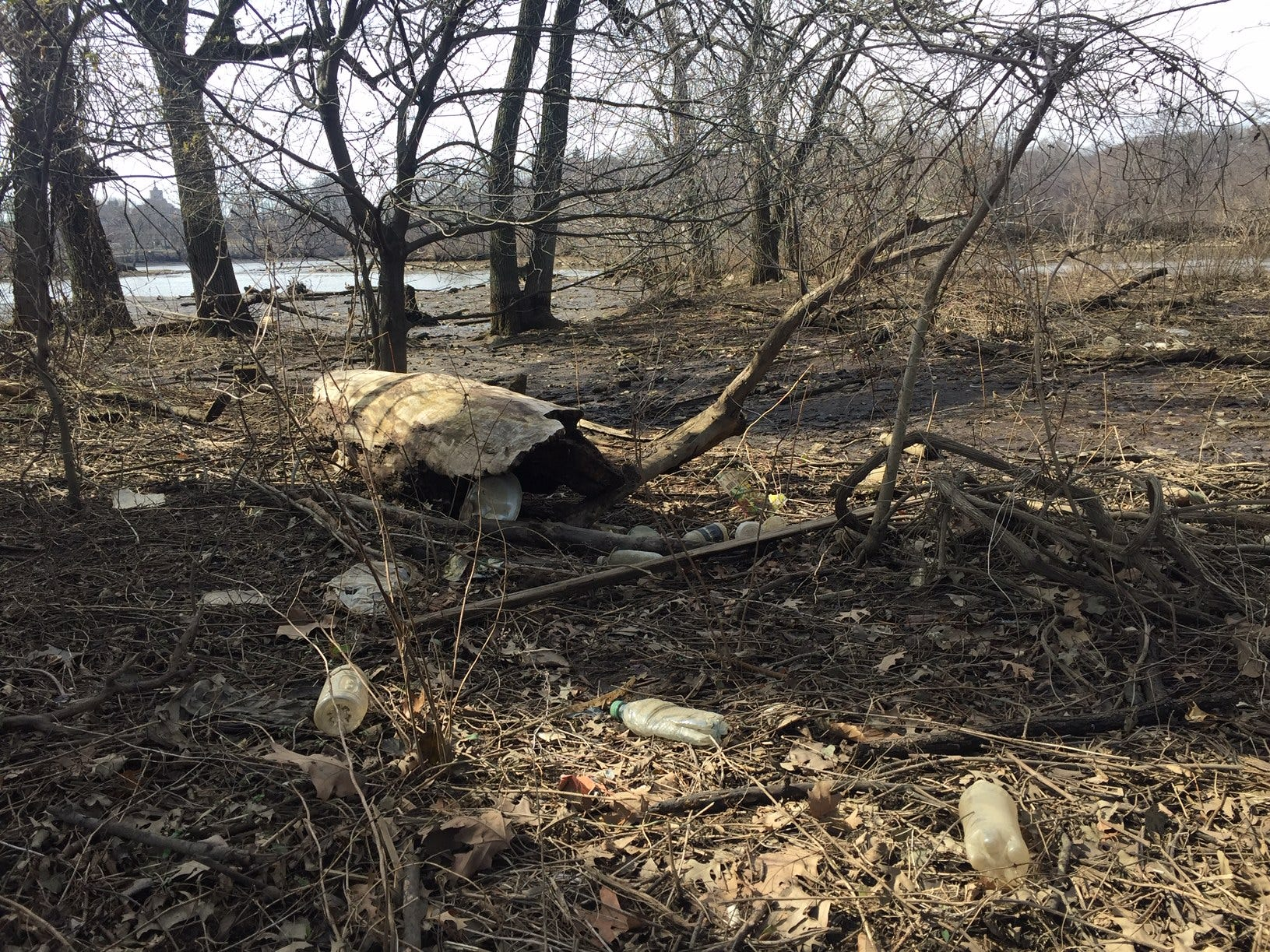 Much debris along the Cooper River banks of Gateway park remains to be cleaned up because Camden County w wanted to open the park's walking and biking trails and its grasslands as soon as possible before major improvements get underway.