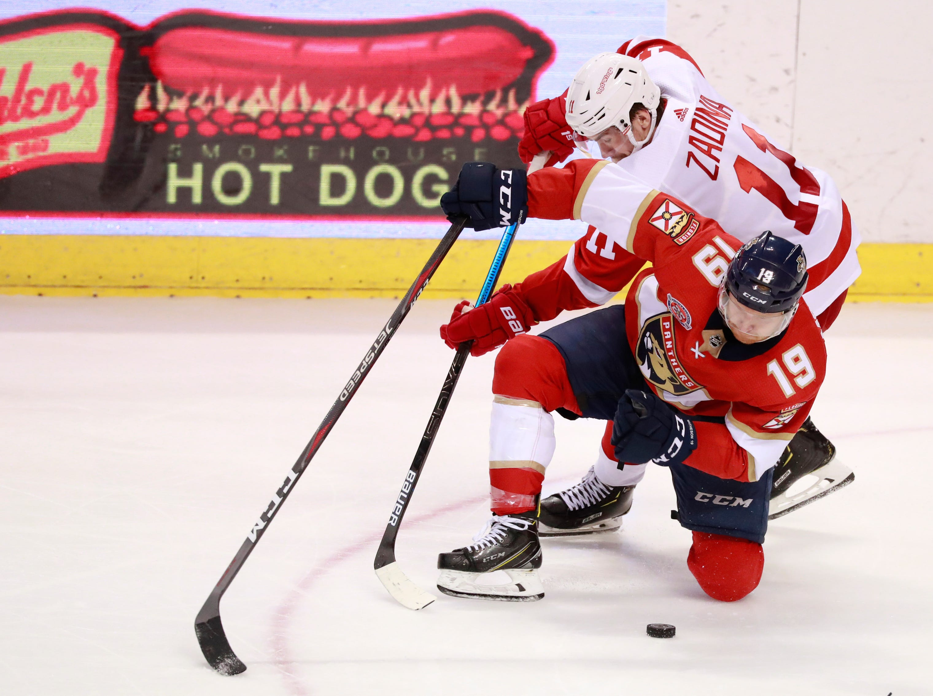Florida Panthers defenseman Mike Matheson (19) and Detroit Red Wings right wing Filip Zadina (11) battle for the puck during the third period.