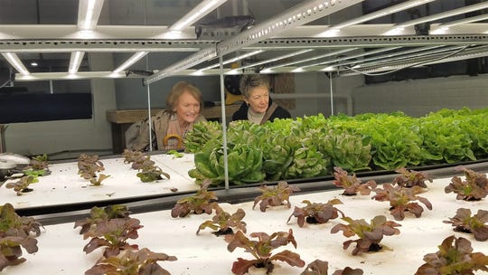 Participants enjoy a tour of APE Aquaponics Urban Garden on an Evansville Culinary Tour.