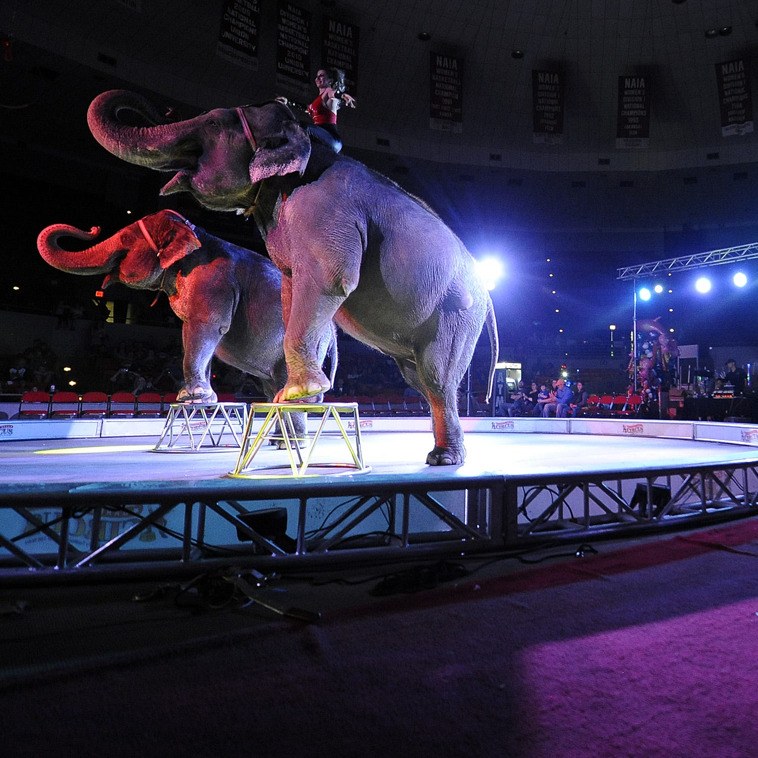 'Worst' circus visits Greenville Convention Center for last shows with performing animals