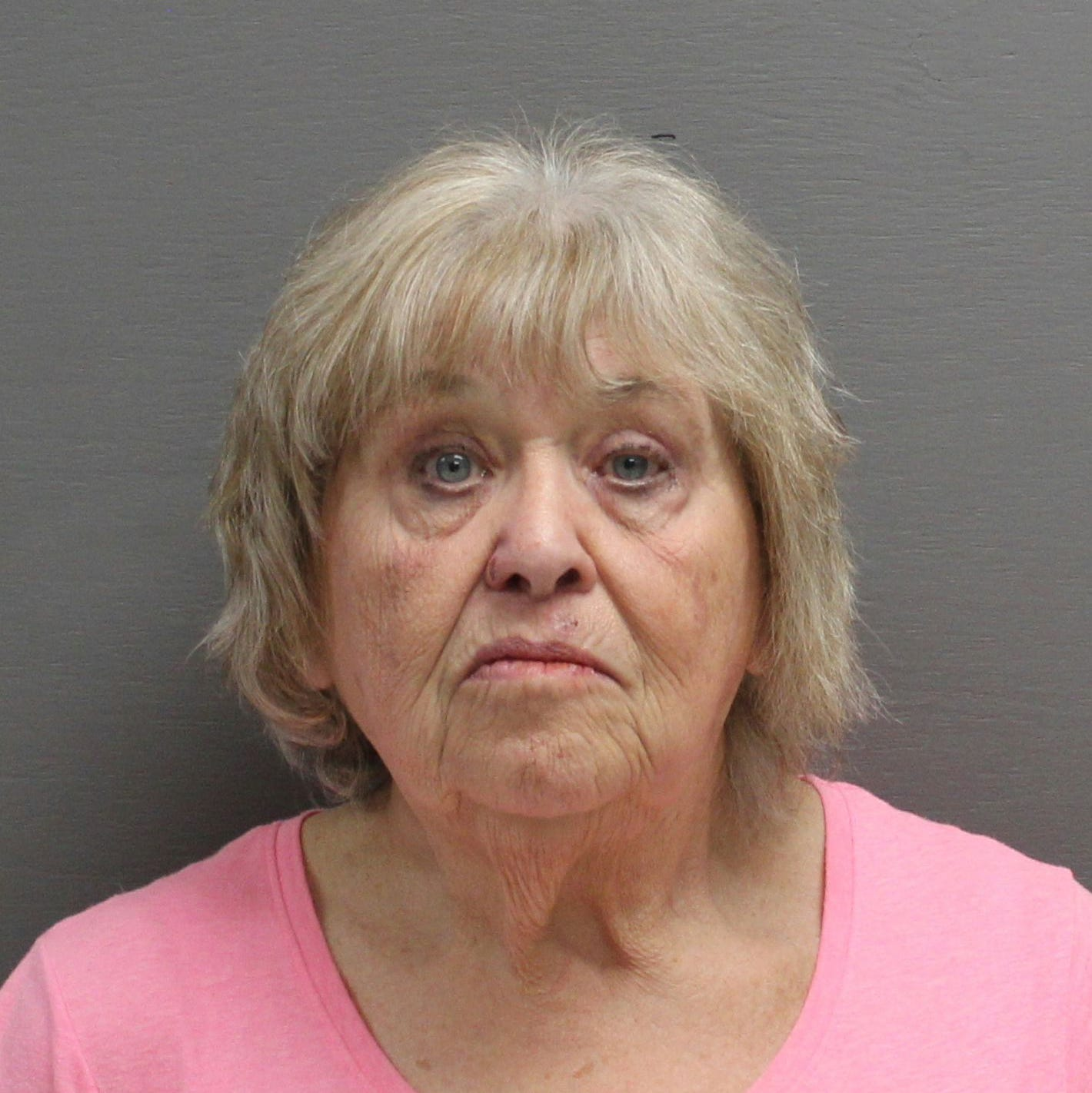 Two dead horses lead to animal cruelty charges for Sun Prairie woman
