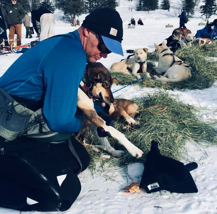 Great Falls musher Bruggeman racing well in Iditarod