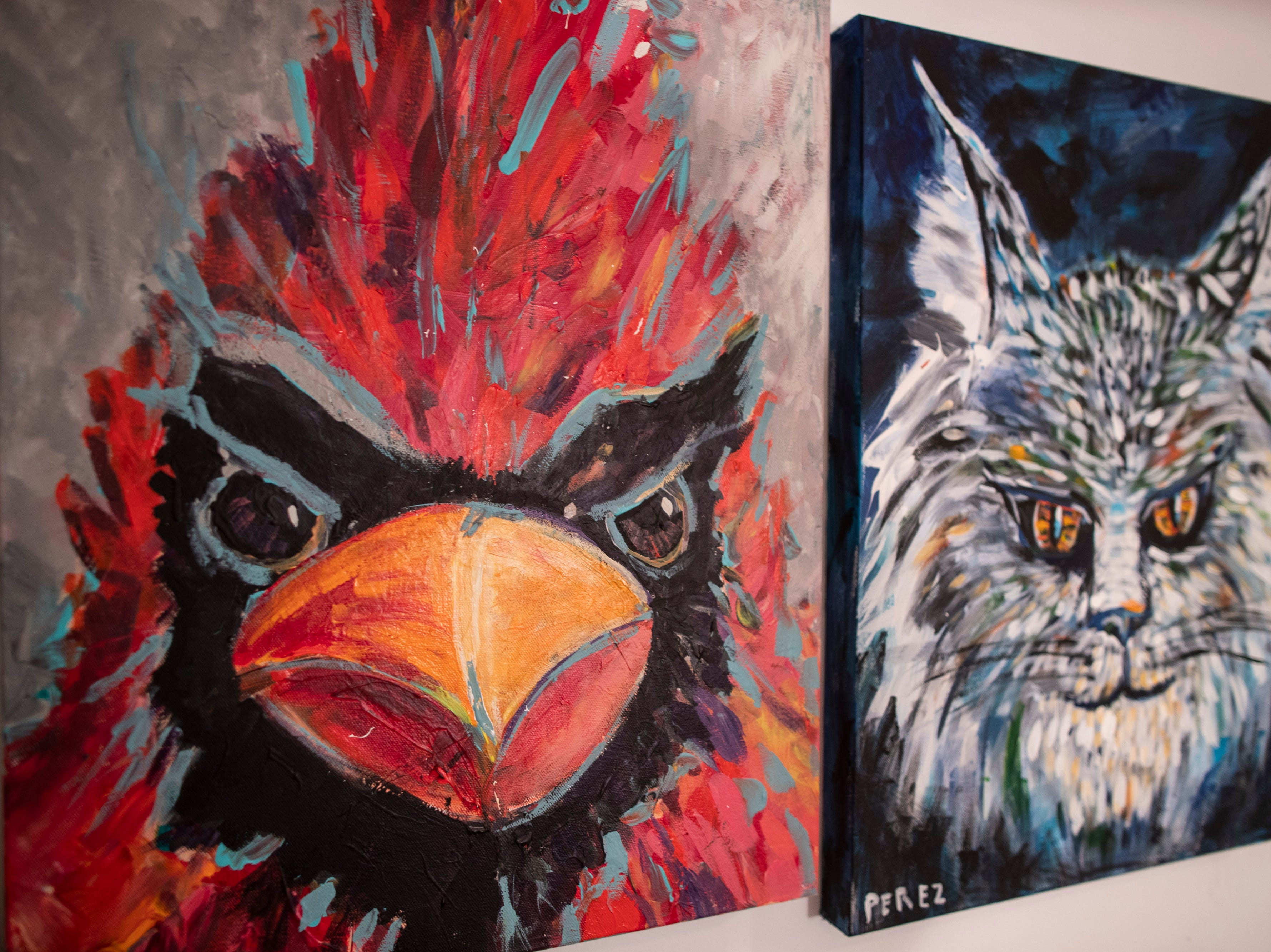 A portrait of a cardinal and a wildcat in the home studio of Louisville artist Andy Perez. March 11, 2019