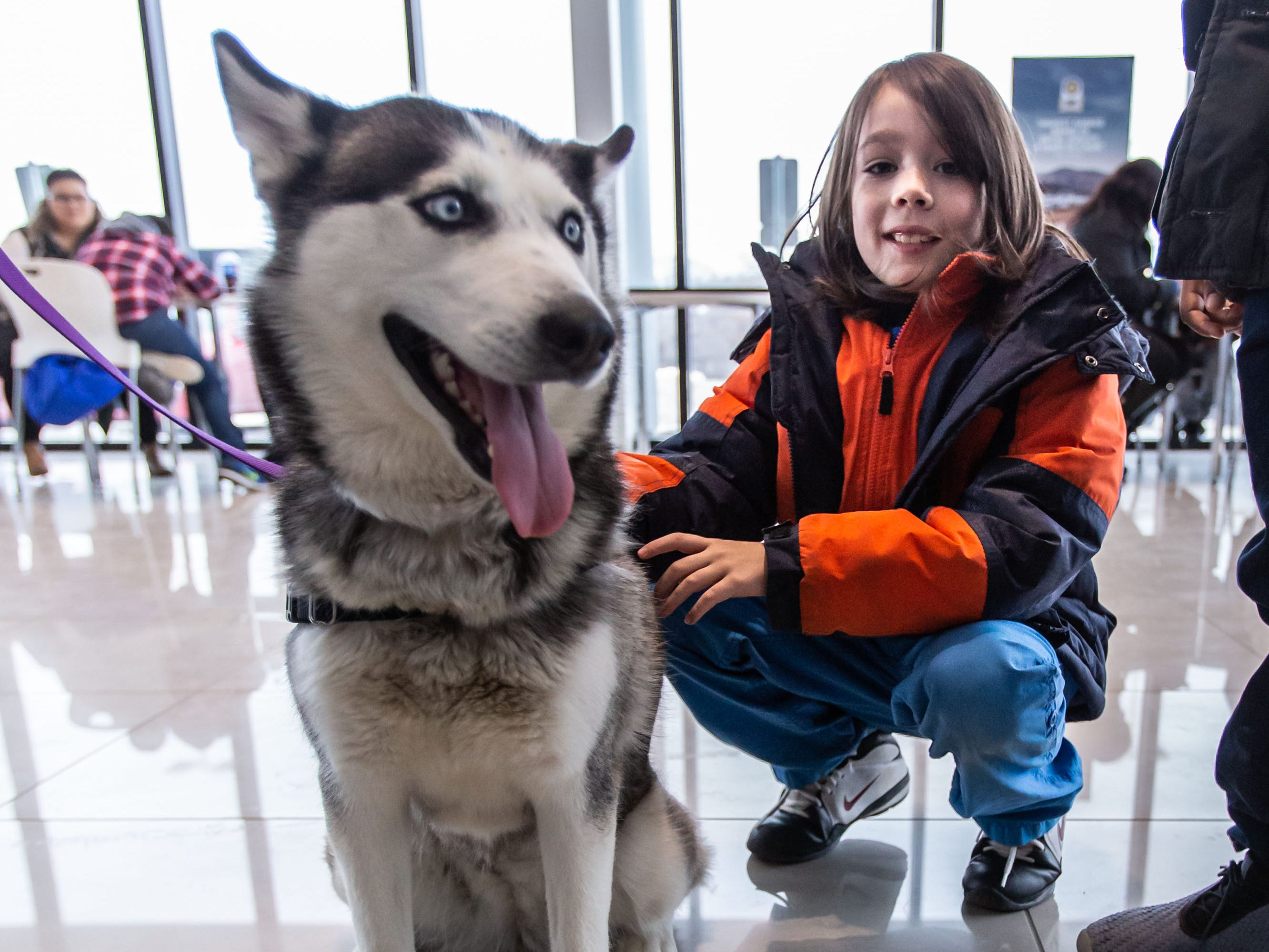 Eight-year-old Oliver H. of Milwaukee makes a new friend during the Adopt a Pet program at Russ Darrow Kia of Wauwatosa on Saturday, March 9, 2019. The event, held in partnership with the Humane Animal Welfare Society (HAWS) in Waukesha and the German Shepard Dogs Club of Wisconsin (GSDCW), offered attendees the opportunity to meet and adopt dogs, cats, rabbits, and other types of animals.