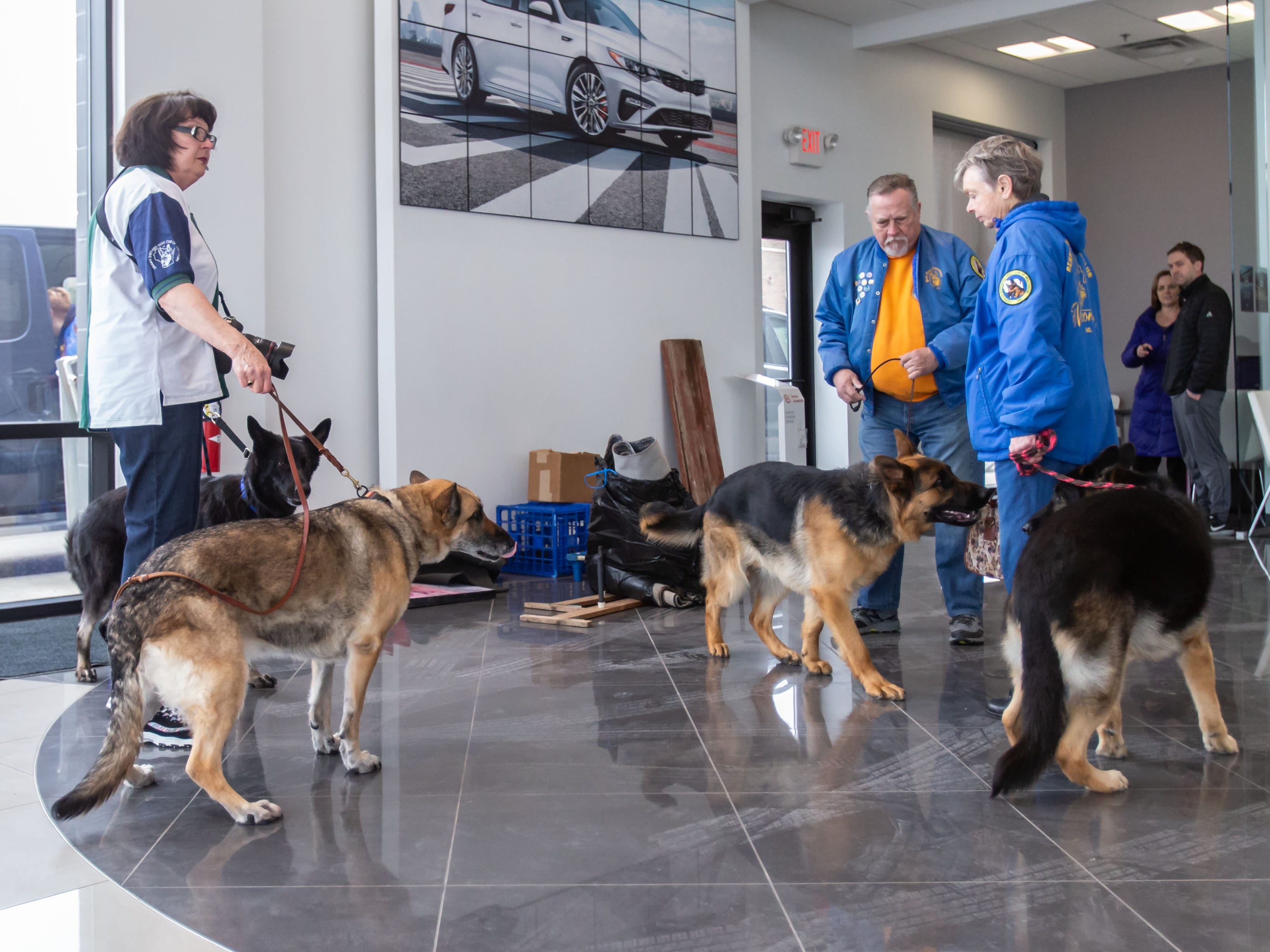 Members of the German Shepard Dogs Club of Wisconsin (GSDCW) attend the Adopt a Pet program at Russ Darrow Kia of Wauwatosa on Saturday, March 9, 2019. The event, held in partnership with the Humane Animal Welfare Society (HAWS) in Waukesha and the GSDCW, offered attendees the opportunity to meet and adopt dogs, cats, rabbits, and other types of animals.