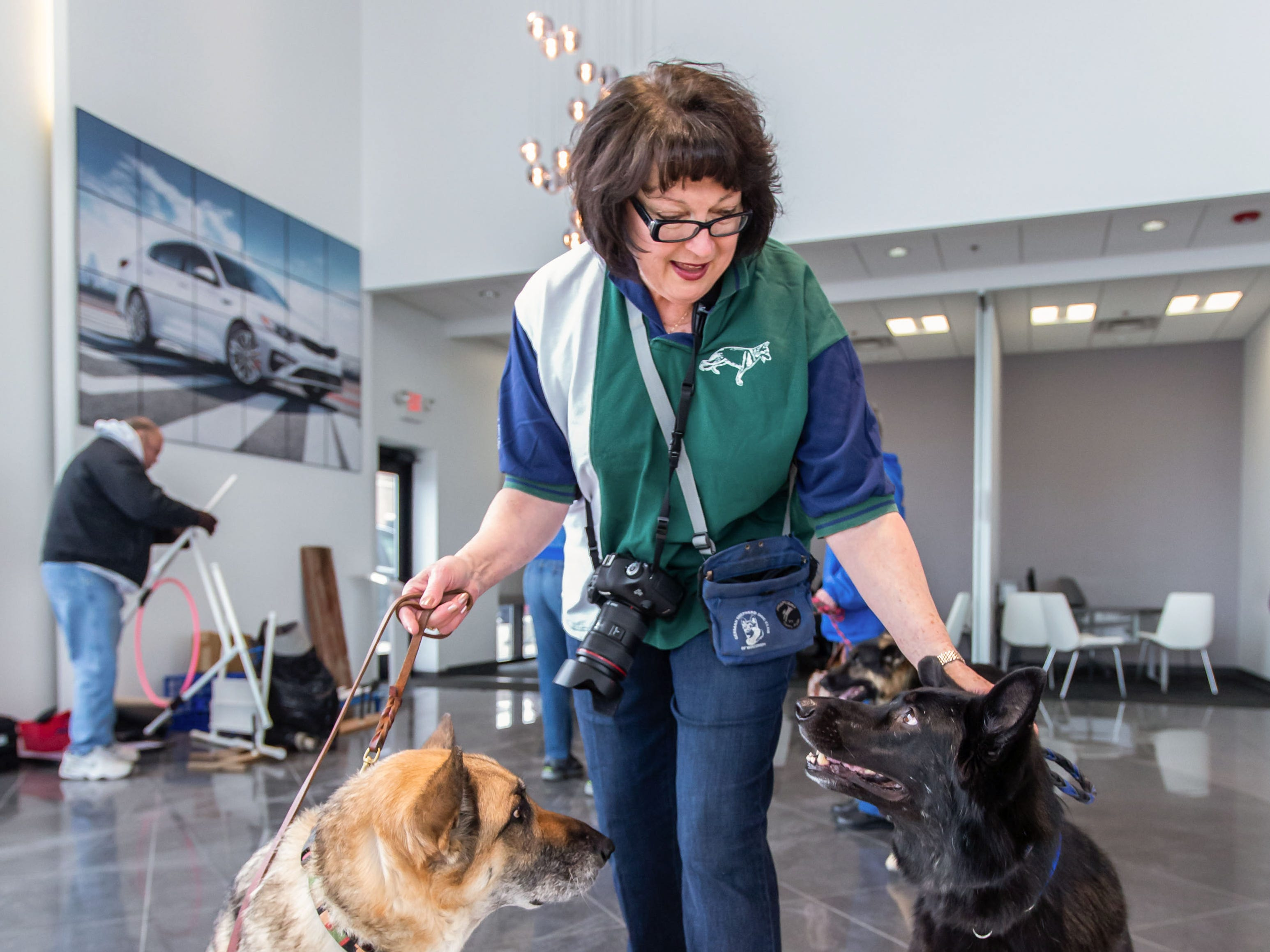 Jo Zimdars of Dousman wrangles a pair of shepherds during the Adopt a Pet program at Russ Darrow Kia of Wauwatosa on Saturday, March 9, 2019. The event, held in partnership with the Humane Animal Welfare Society (HAWS) in Waukesha and the German Shepard Dogs Club of Wisconsin (GSDCW), offered attendees the opportunity to meet and adopt dogs, cats, rabbits, and other types of animals.