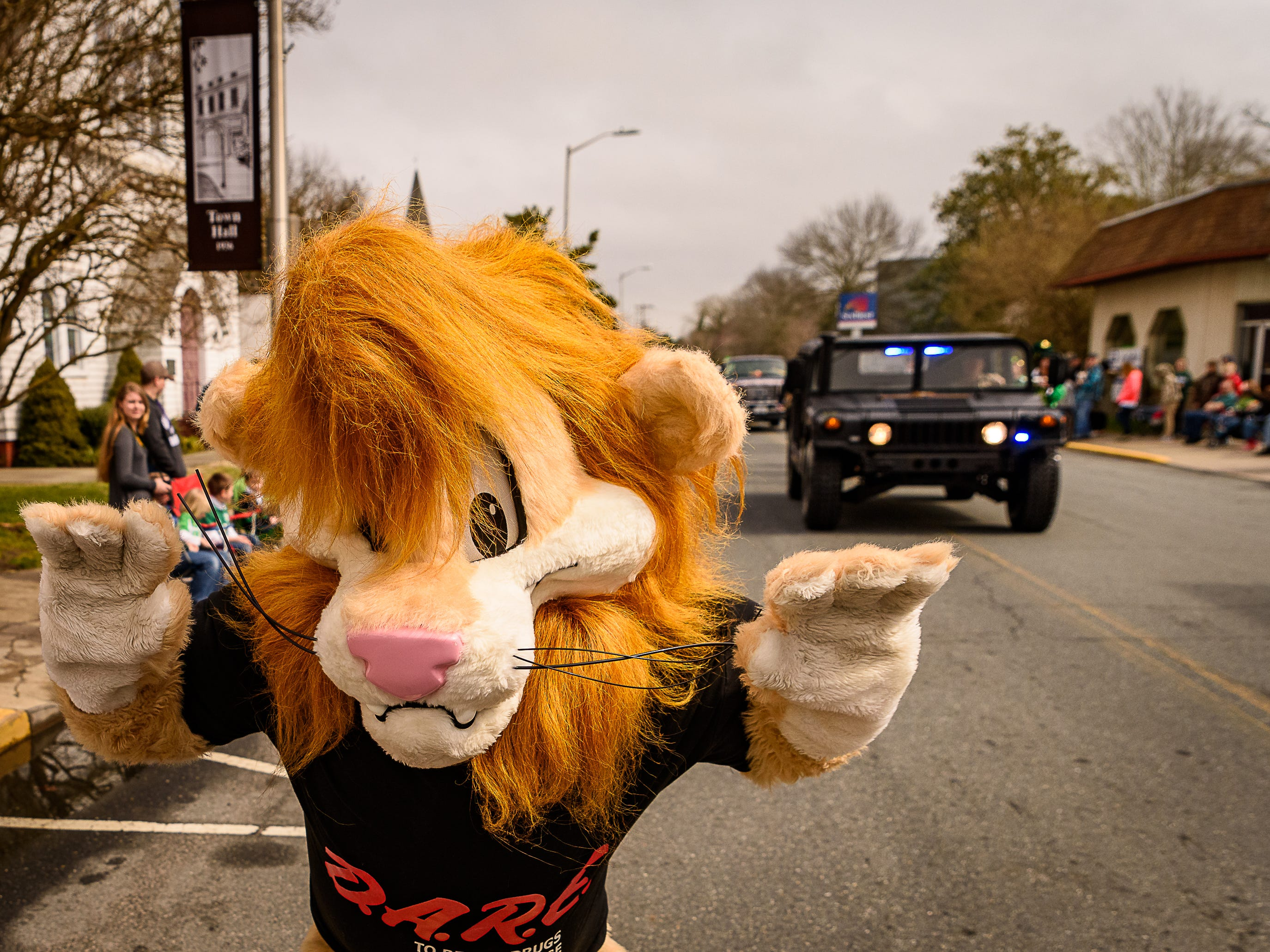 The Accomack County DARE lion walks along the parade route in Onancock.