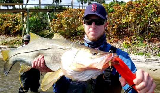 Zack Jordan of Port St. Lucie caught and released this 34-inch snook Sunday while wade fishing the western shoreline of the Indian River Lagoon north of Midway Road. He was using a Monster 3X shrimp lure.