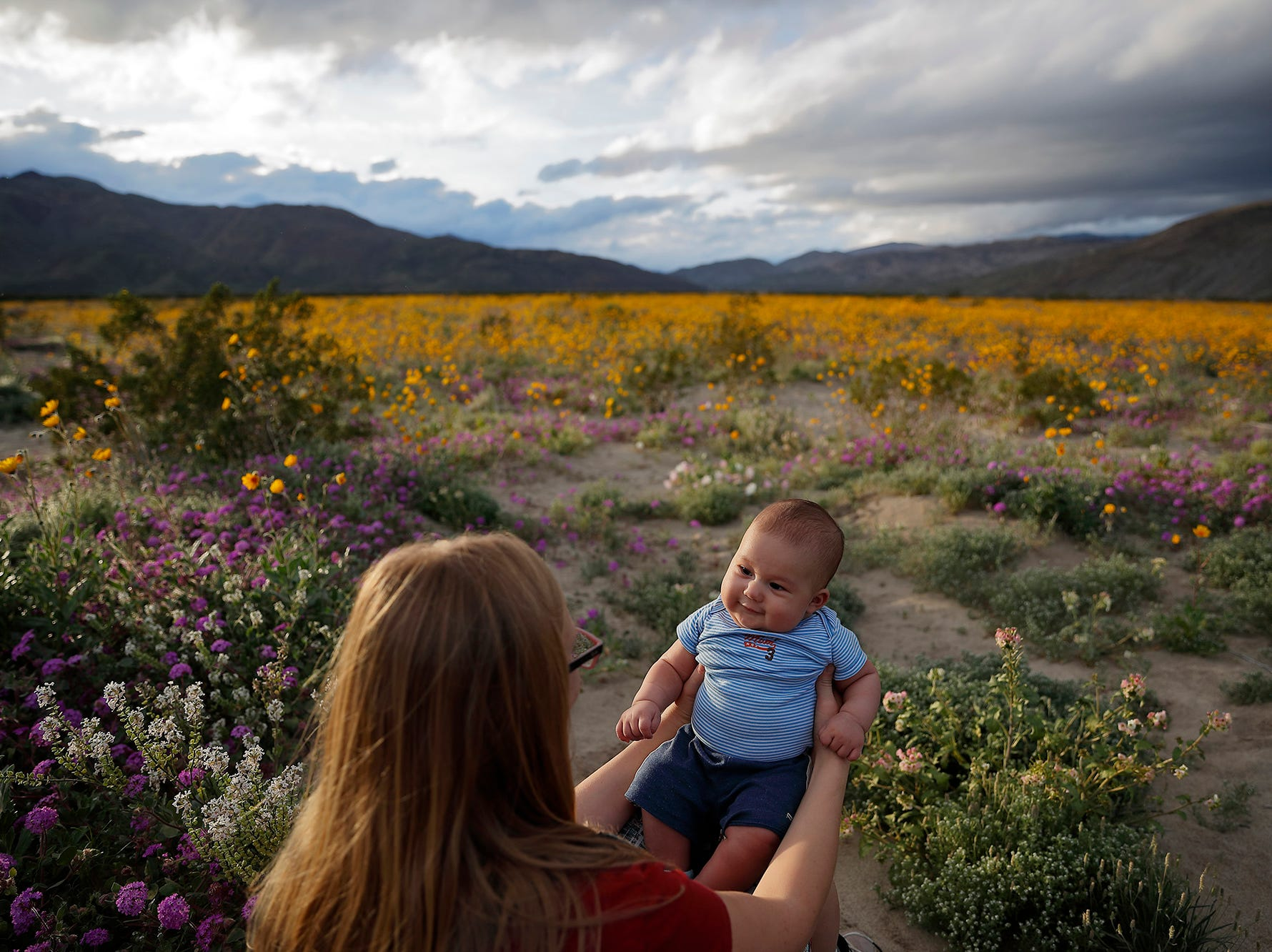 Rene Garcia holds her three-month-old son Brandon amid wildflowers in bloom near Borrego Springs, Calif. March 6, 2019.