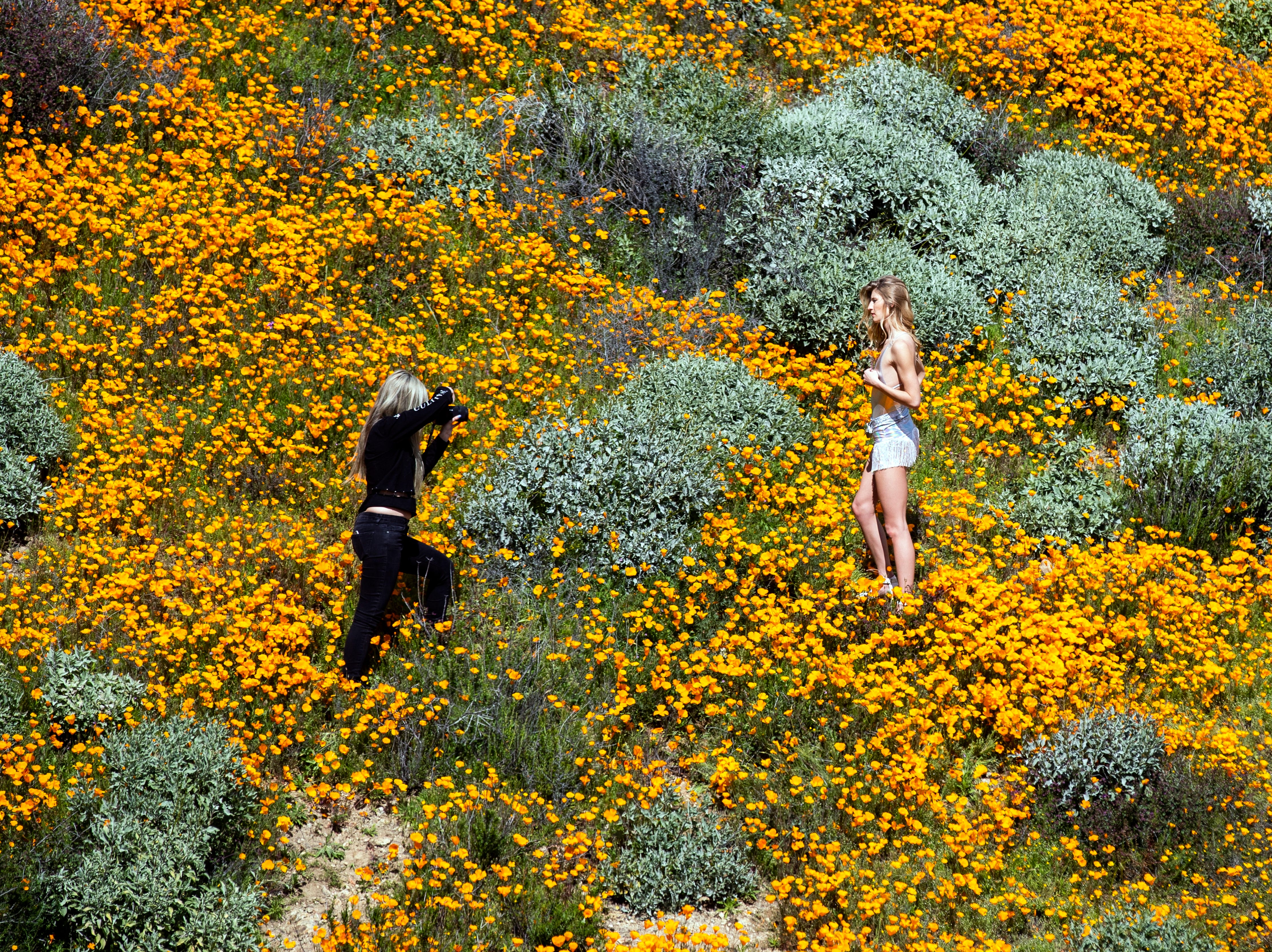 epa07424022 Girls take 'fashion' pictures of each other in the middle of a poppy fields on a slop of Walker Canyon near Lake Elsinore, California, USA, 08 March 2019. The heavy rains in California have boosted the growth of wild desert flowers, an occurrence called super bloom.  EPA-EFE/ETIENNE LAURENT ORG XMIT: ELAU4371