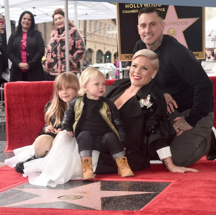 "Pink and her family need a break once and while from the trolls. One recently criticized her family during a taco night during a break from her ""Beautiful Trauma"" tour."