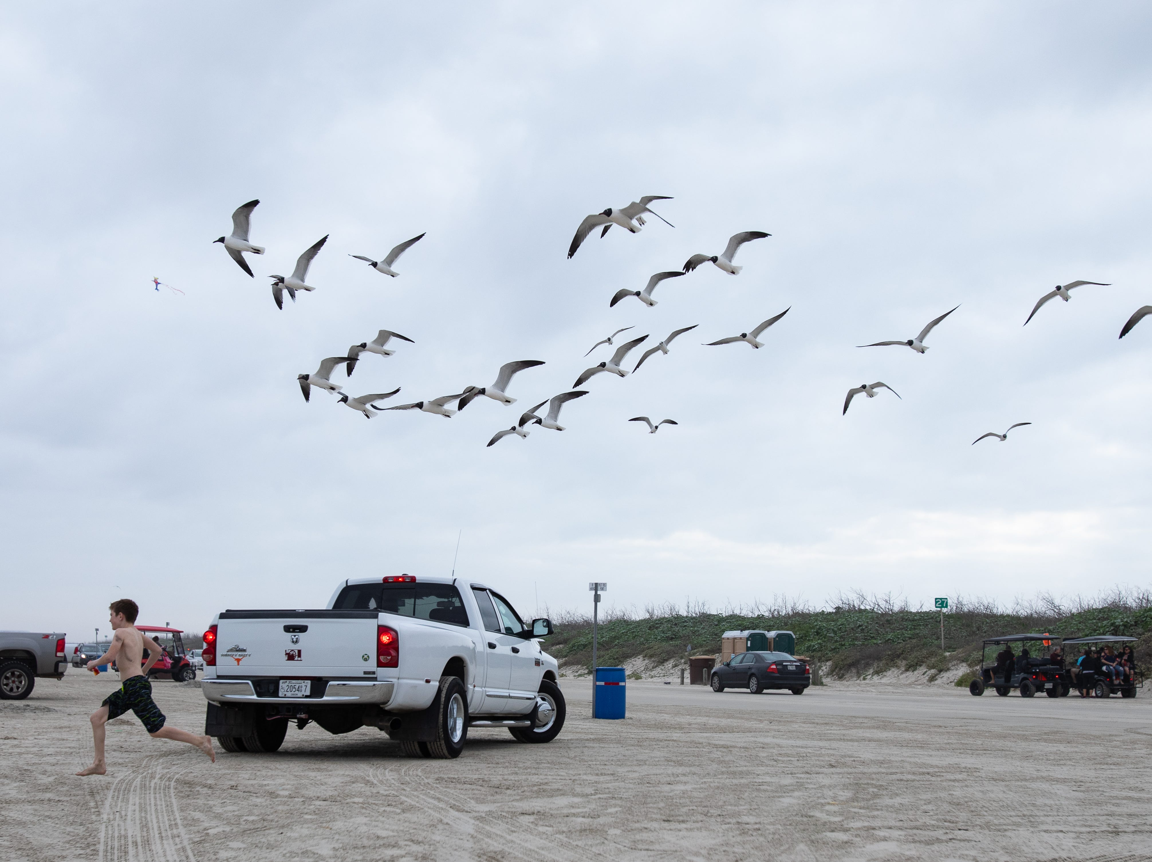 Seagulls chase a young boy holding food on the beach in Port  Aransas during spring break 2019, Monday, March, 11, 2019.