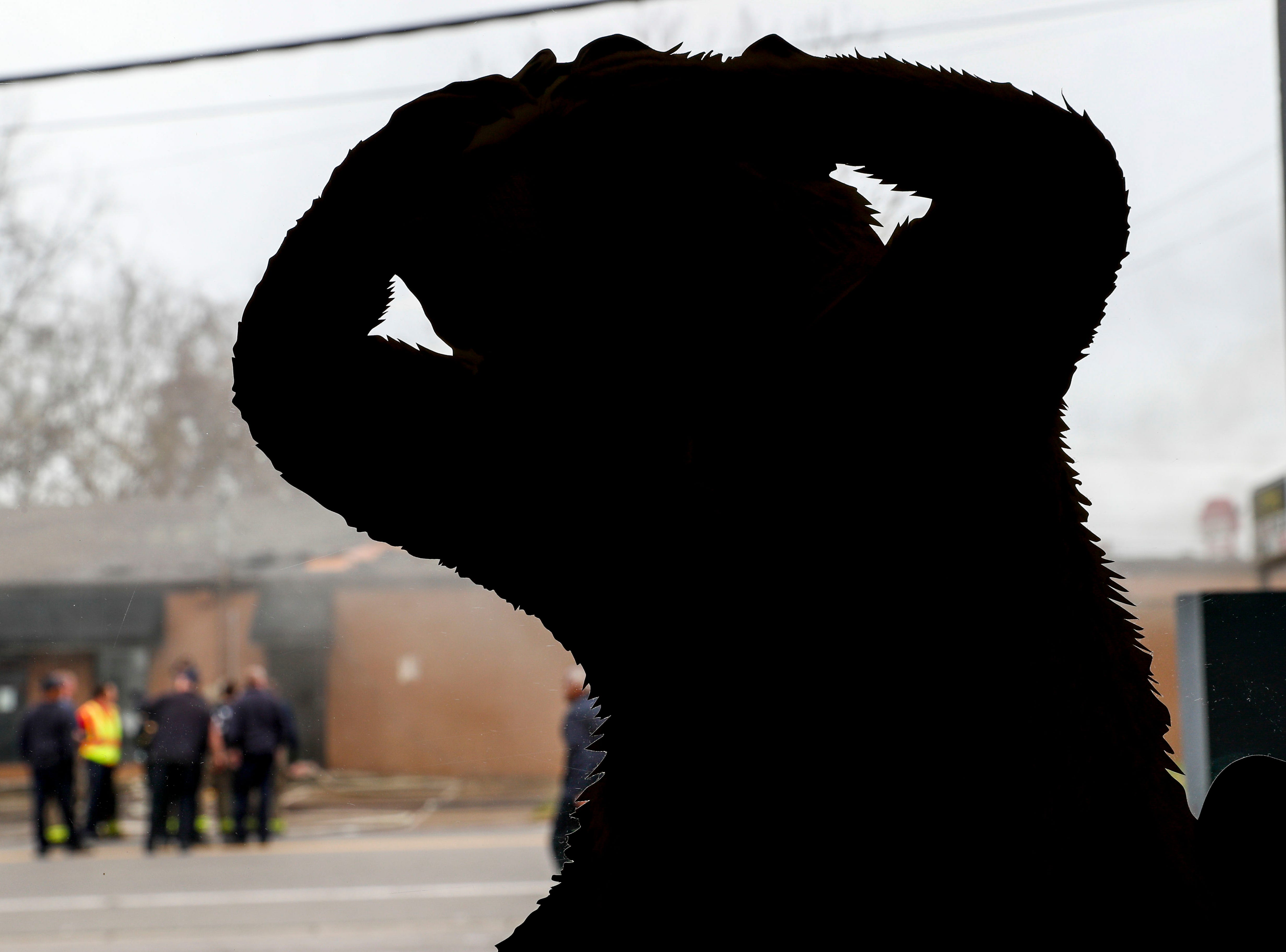 A cutout of a beaver in the window of Thomas Lumber Co appears to be reacting to the fire that damaged the shooting range at Clarksville Guns & Archery in Clarksville, Tenn., on Tuesday, March 12, 2019.