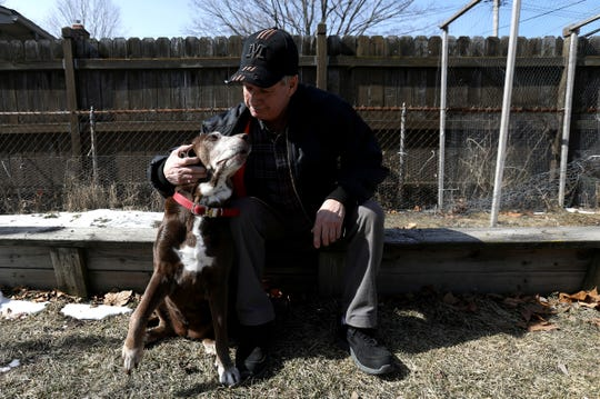 Brad Stottlemyer, 65 of Dearborn Heights with his 11-year-old chocolate lab mix Misty at their home on Thursday, March 7, 2019. Misty has bone cancer in her right front bone joint and the Essential CBD pet drops, a marijuana-based product, has helped her not limp as much and become more active.
