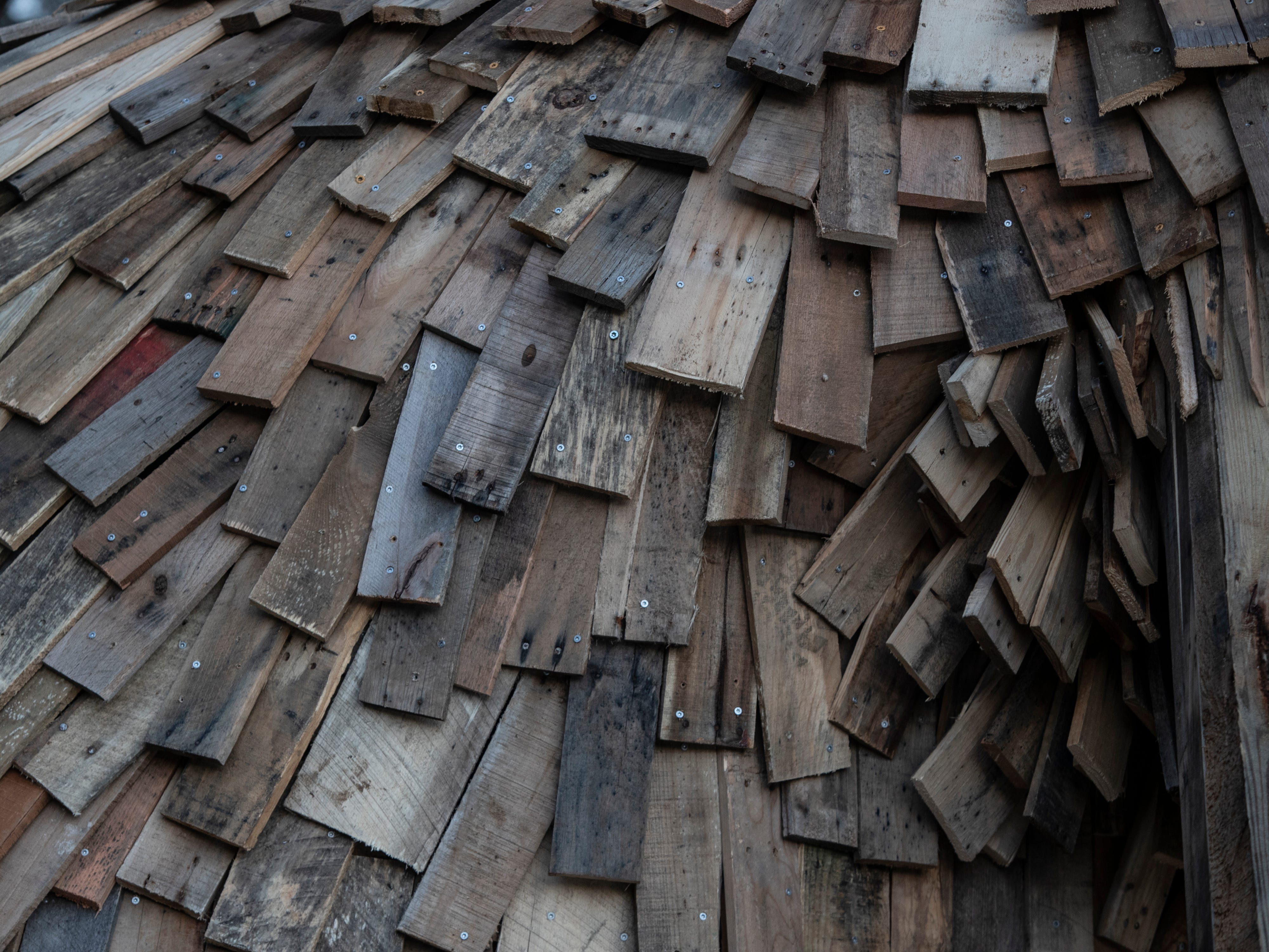 """""""Little Nis"""" fur is made of recycled pallets. Feb. 27, 2019"""