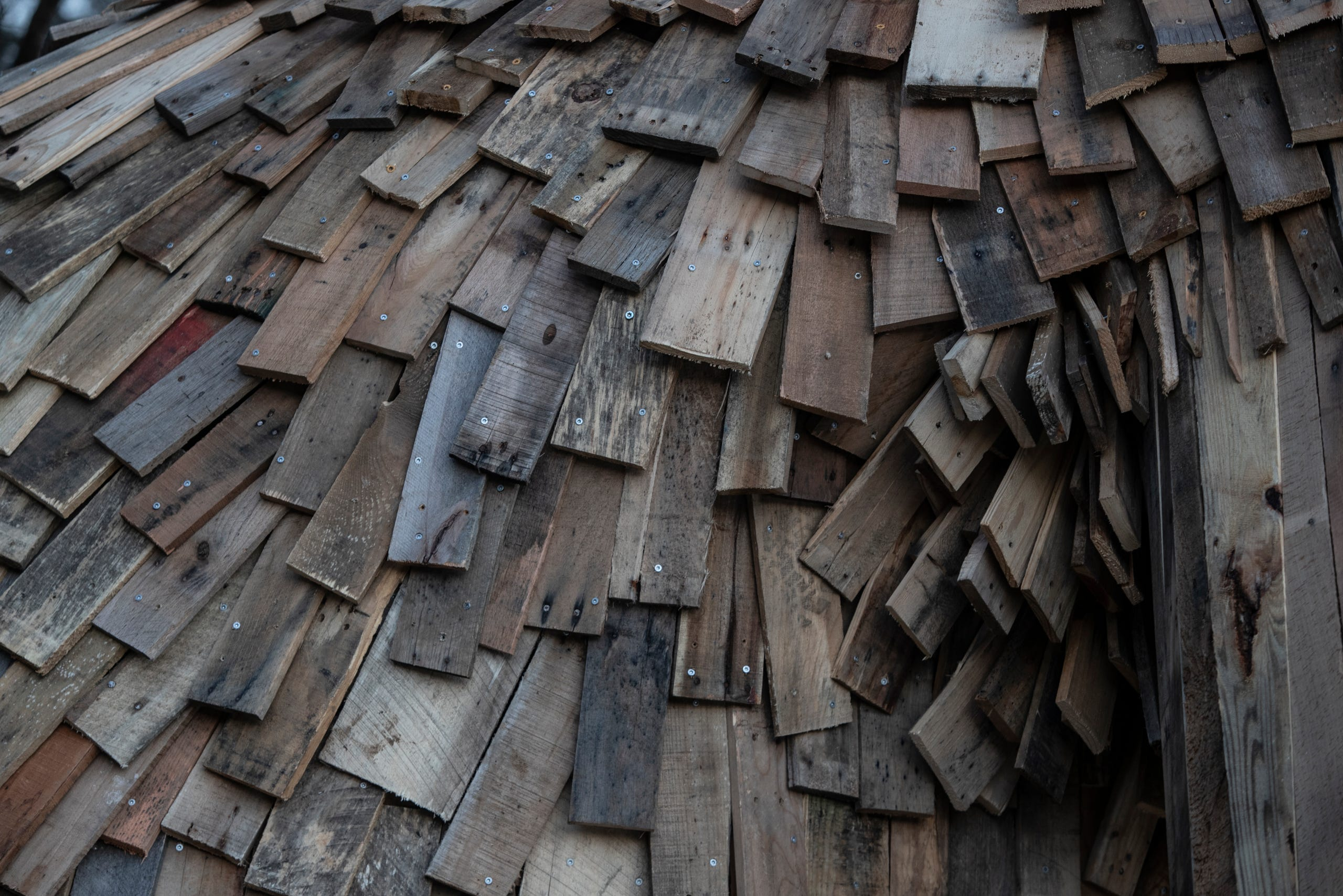 """Little Nis"" fur is made of recycled pallets. Feb. 27, 2019"