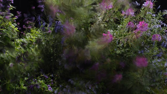 """Quayola (Italian), """"Jardins d'Été #2 (still),"""" 2016, video with sound, 47:40.  Collection of Laura Lee Brown and Steve Wilson, 21c Museum Hotels."""