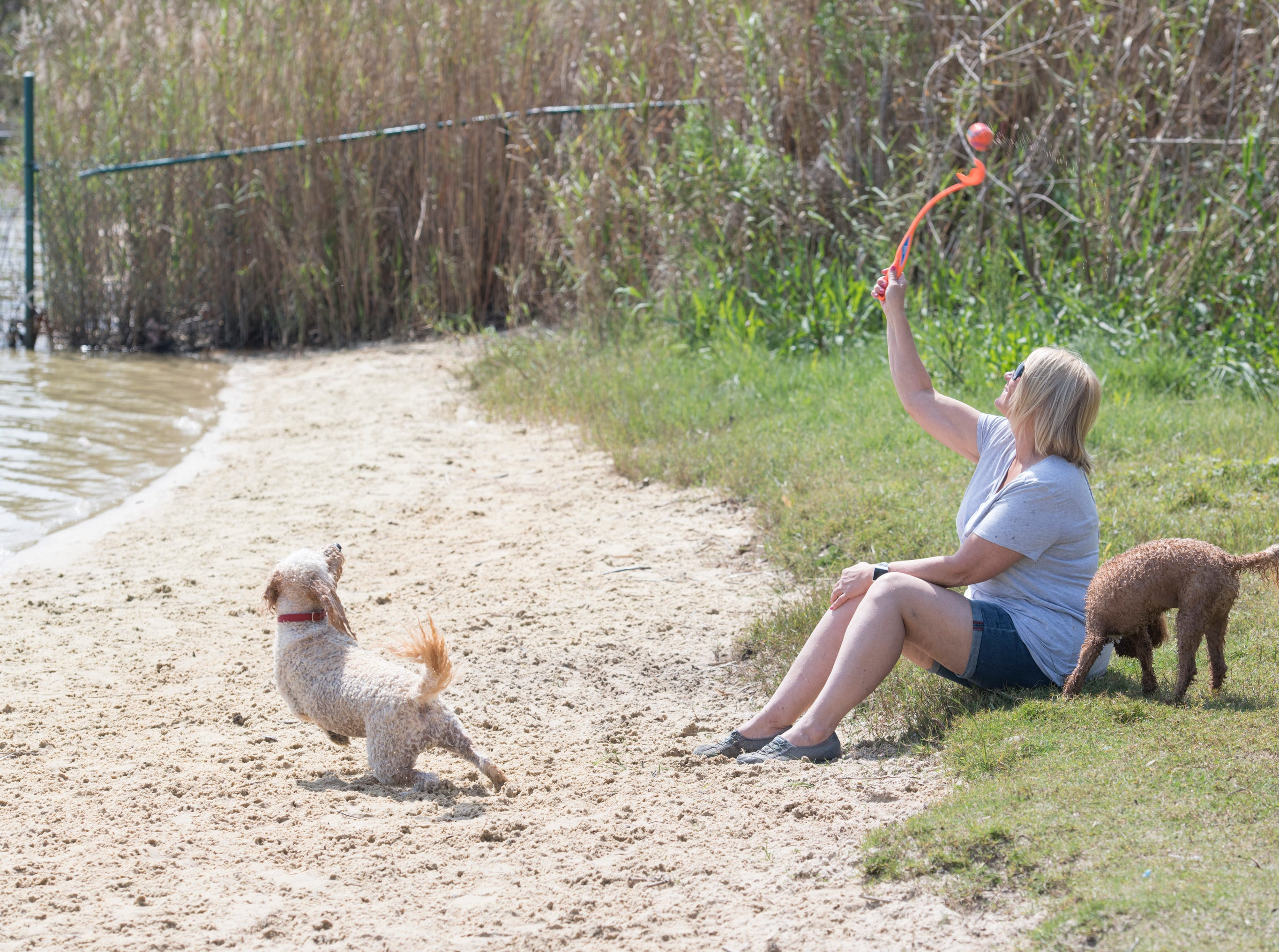 Trudy Adams, of Navarre, tosses a ball for her dogs Teddy, left, and Rory at Bayview Park's dog park in Pensacola on Tuesday, March 12, 2019.  Adams and fellow Navarre residents hope to get a similar dog park for their city.