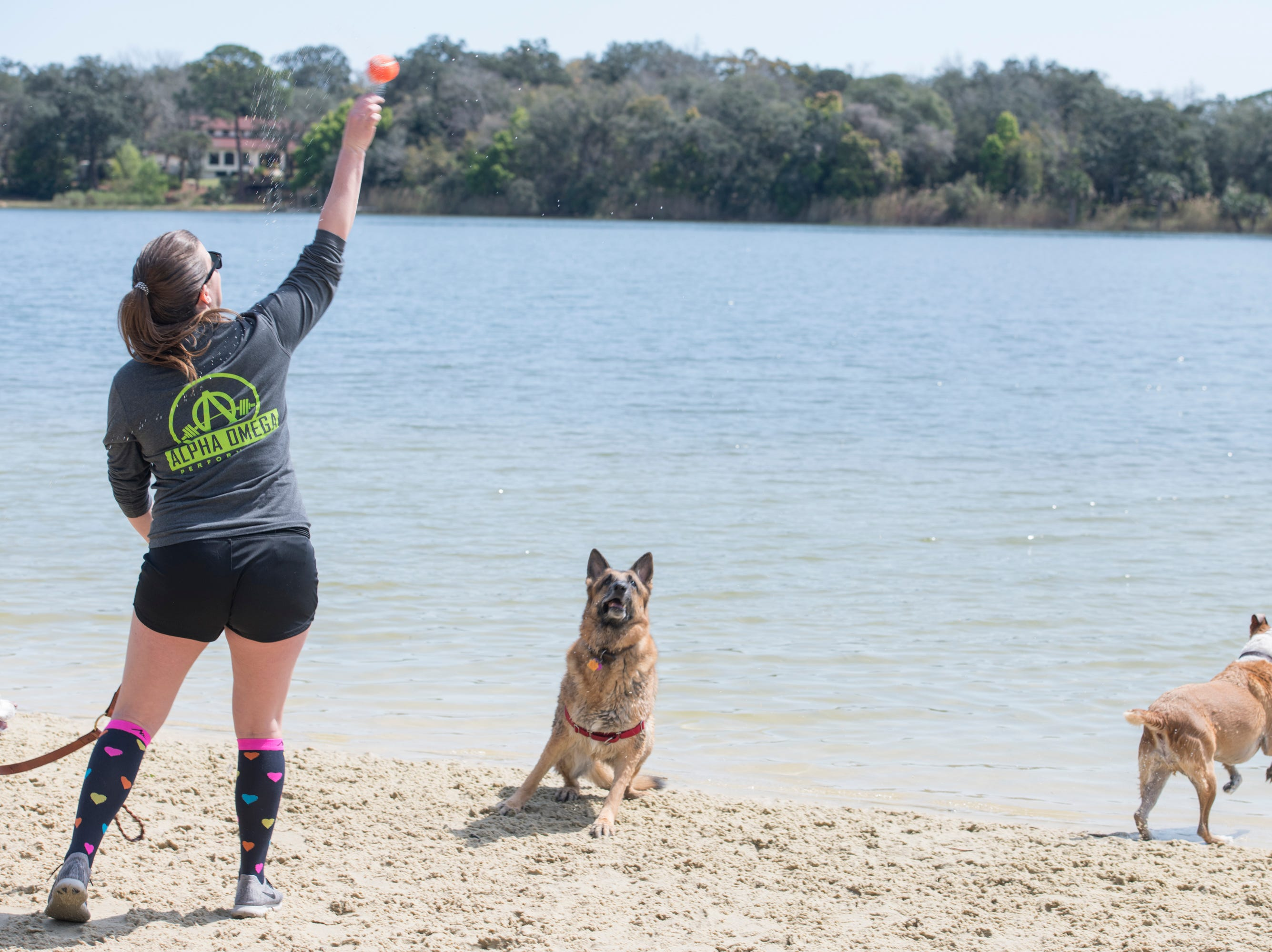 Allie Mink throws a ball for her dog Max, right, and another eager pooch at Bayview Park's dog park in Pensacola on Tuesday, March 12, 2019.  Navarre residents hope to get a similar dog park for their city.