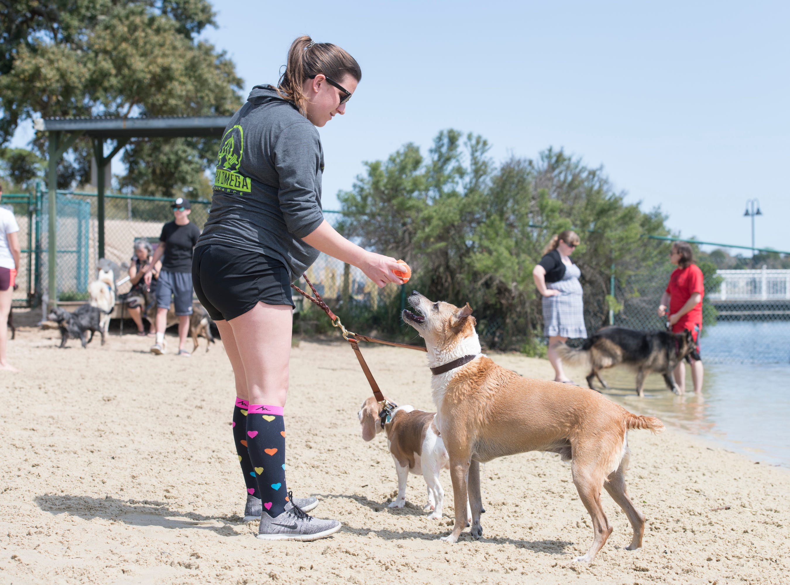 Allie Mink plays ball with her dogs Max, right, and Chloe at Bayview Park's dog park in Pensacola on Tuesday, March 12, 2019.  Navarre residents hope to get a similar dog park for their city.