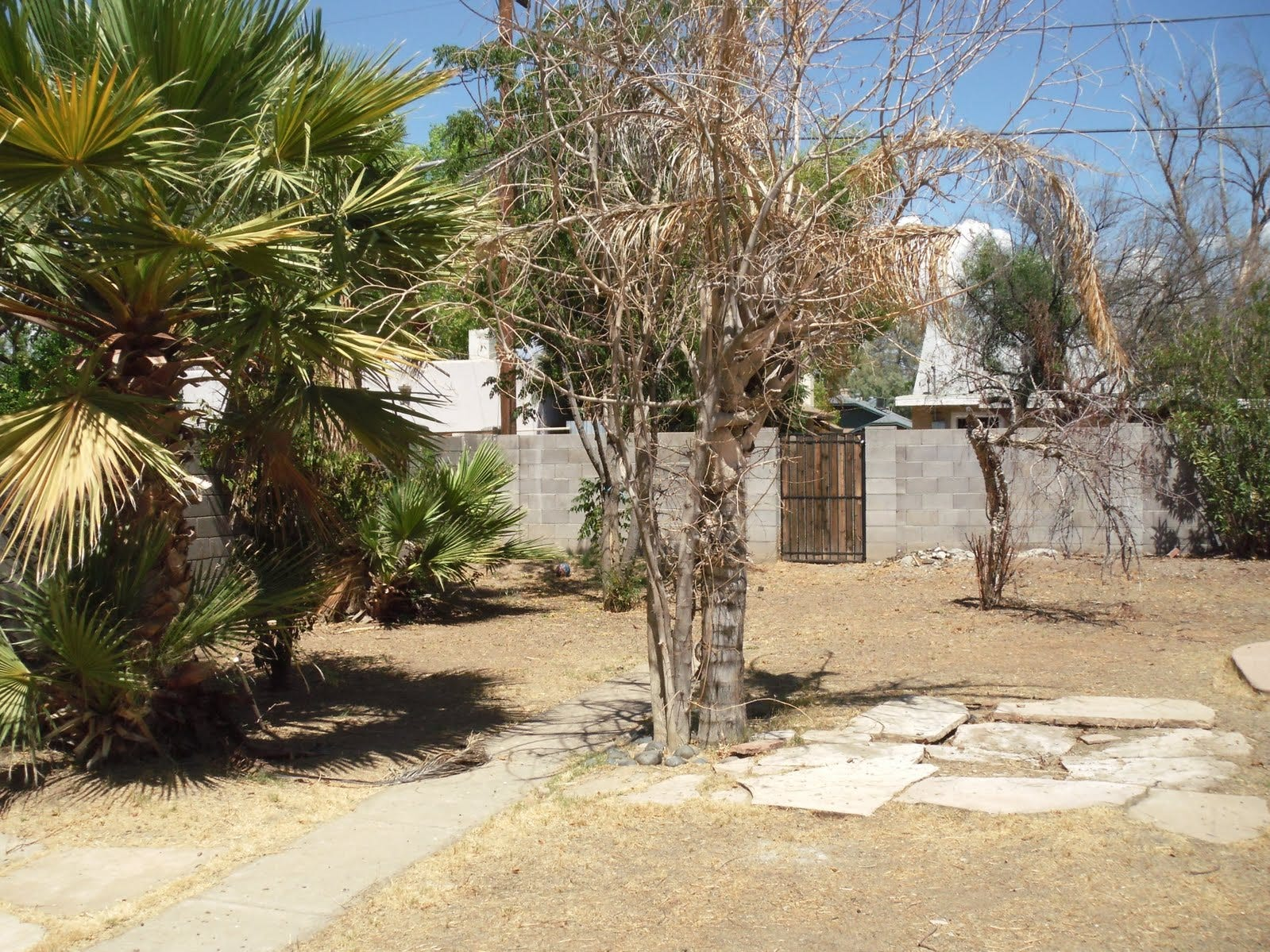 2010 picture of the back yard, where the guest house was built after home owners Paul Hennings and Sheila Krueger bought the property.