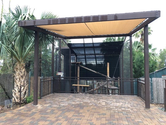 The Phoenix Zoo's jaguar exhibit is on a raised platform. That platform is more than five and a half feet from the enclosure's steel mesh fence.