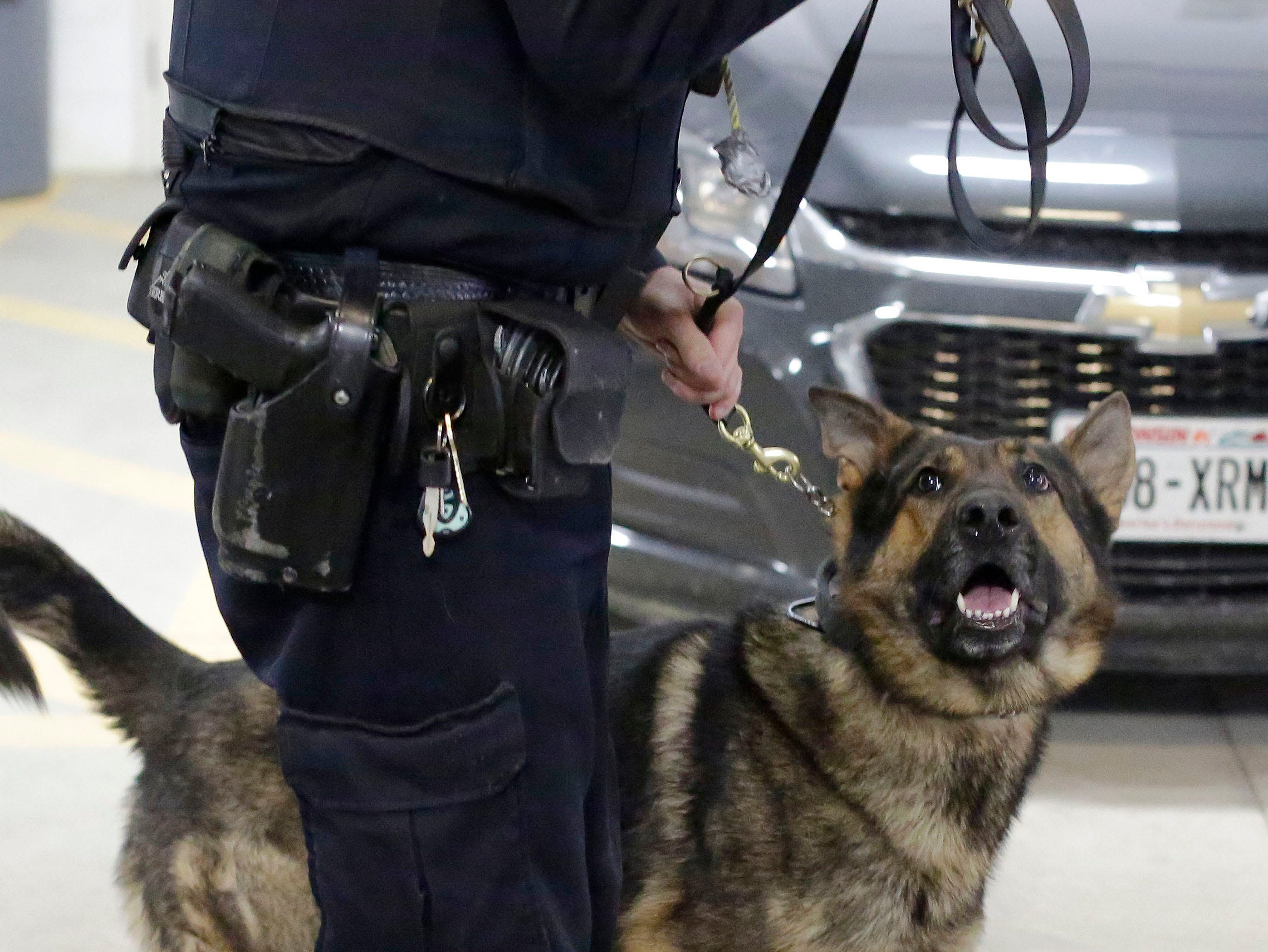 Sheboygan Police officer Matt Heimerl holds police dog Grimm during a training session, Wednesday, March 6, 2019, in Sheboygan, Wis.