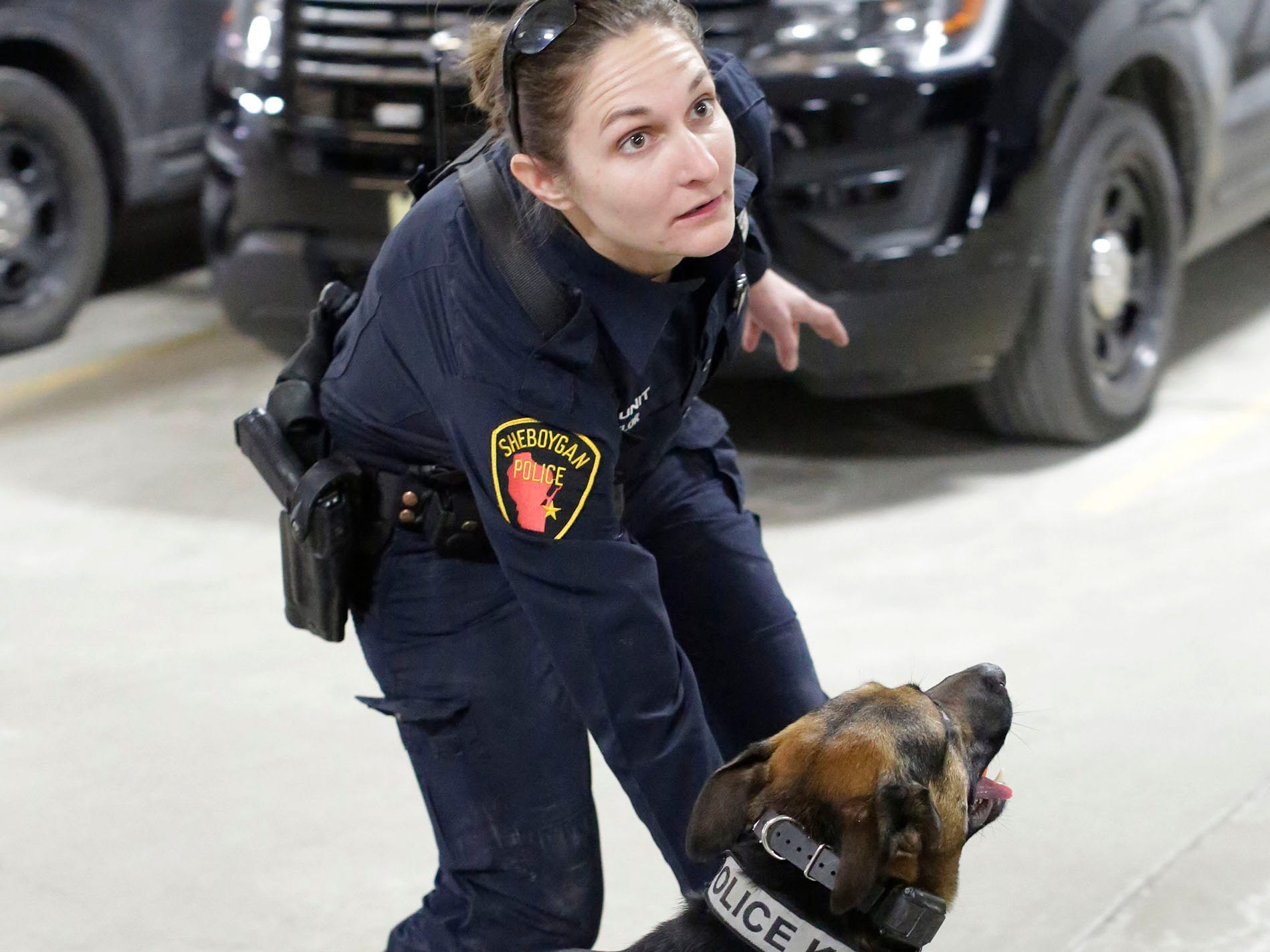 Sheboygan Officer Anna Taylor looks up while working on training with police dog Max, Wednesday, March 6, 2019, in Sheboygan, Wis. According to Taylor, a ball is his reward for doing his job.