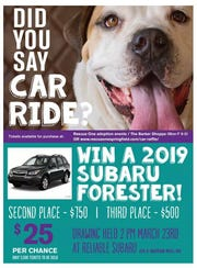 Reliable Subaru is raffling a 2019 Forester to benefit Rescue One.