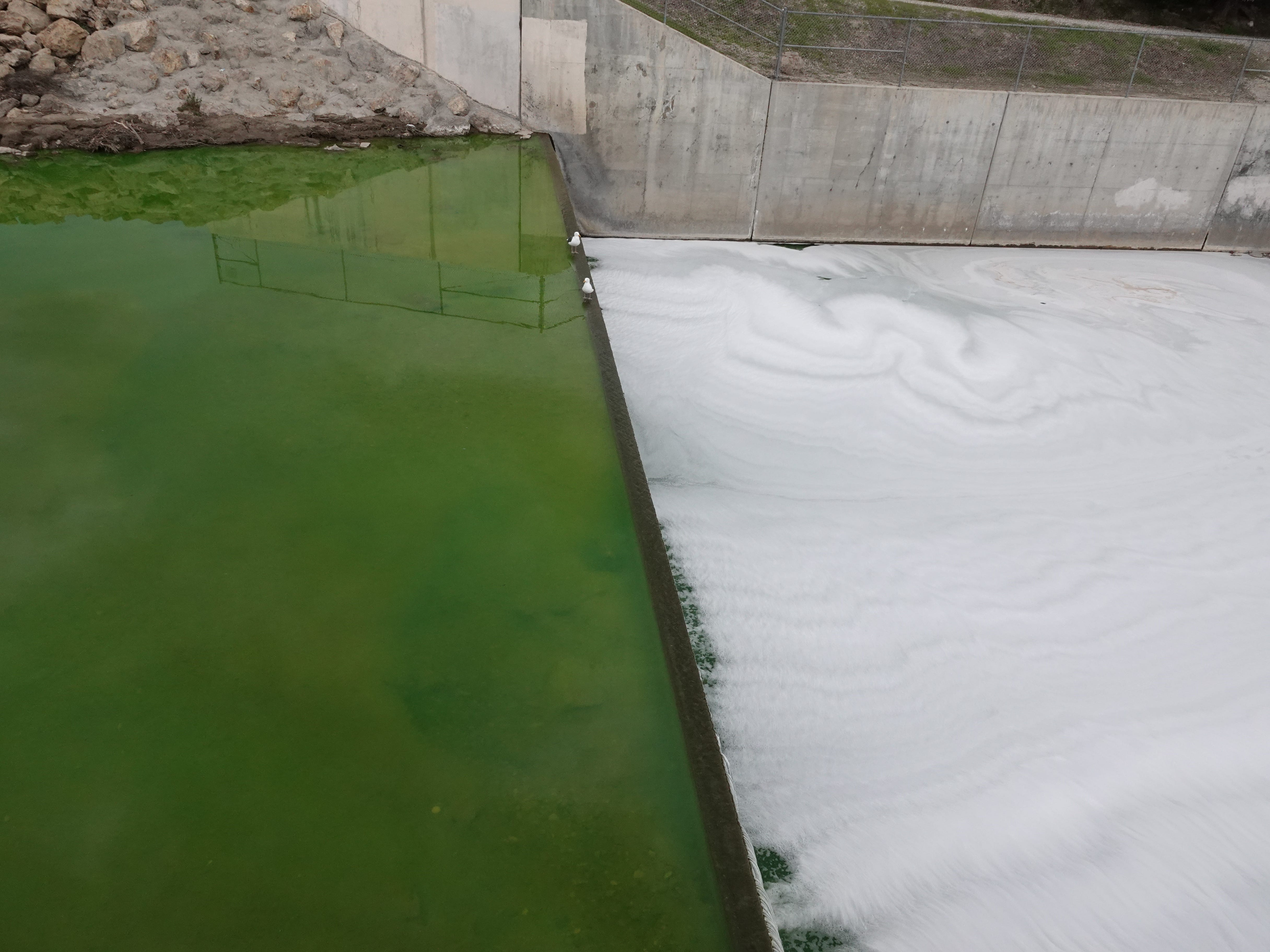 Bright green water contrasts with foam pooled below a small dam in the Arroyo Simi Monday afternoon downstream of Los Angeles Avenue. A substance that colored the water was found to be non-hazardous and likely an automotive polish or wax, officials said.