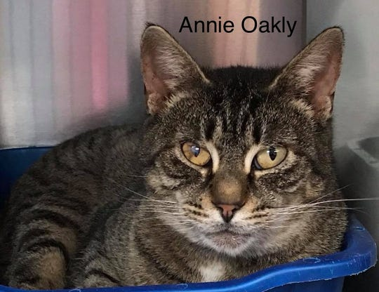 Annie Oakly