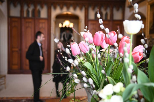 Lyndhurst Flower Show