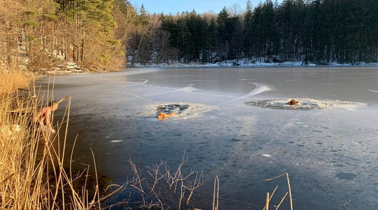 Yonkers resident Timofey Yuriev and his white golden retriever, Kira, prepare to help two dogs that fell through ice at the Irvington Reservoir on March 9, 2019.