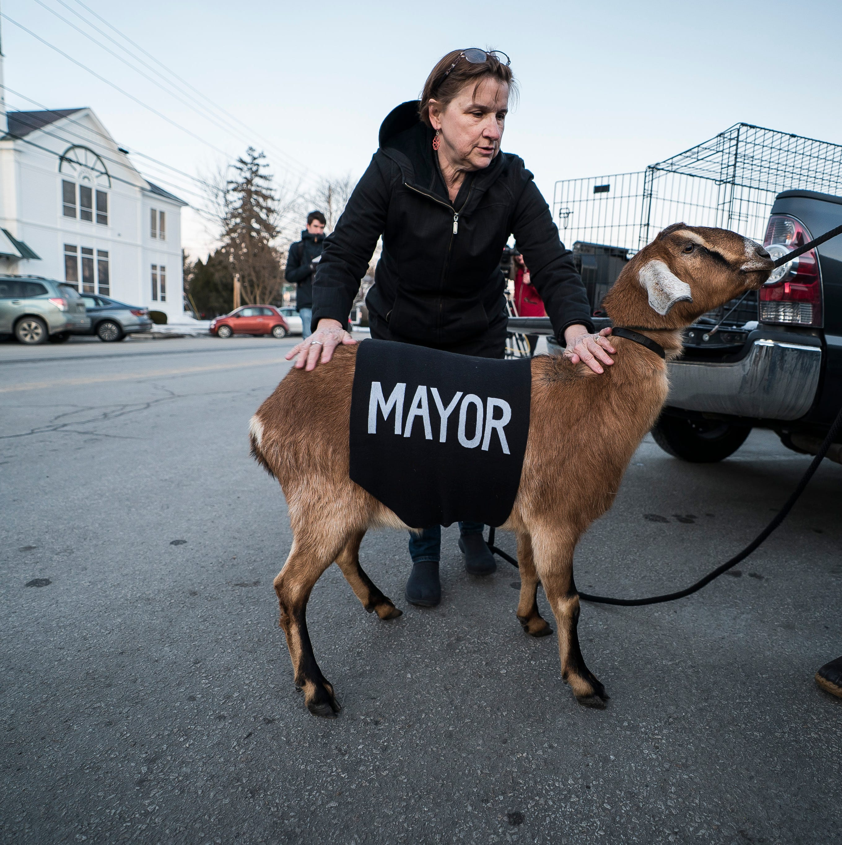 Lincoln the goat sworn in as Fair Haven's new mayor, immediately defecates