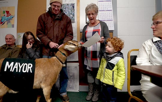 Town Clerk Suzanne Dechame reads the oath office to Lincoln, a 3-year-old Nubian goat, during the animal's swearing in ceremony in Fair Haven, Vt., on Tuesday, March 12, 2019. Left, Lincoln's owner Chris Stanton and grandson Sullivan Clark -- who nominated Lincoln for her mayoral run as part of playground fundraiser -- were part of the proceedings.