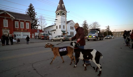 Chris Stanton leads Lincoln, a 3-year-old Nubian goat, into the town offices in Fair Haven, Vt., on Tuesday, March 12, 2019, for a swearing-in ceremony. The Mayor-elect goat ran for the special pet election after being nominated by their grandson Sullivan Clark as part of a playground fundraiser.