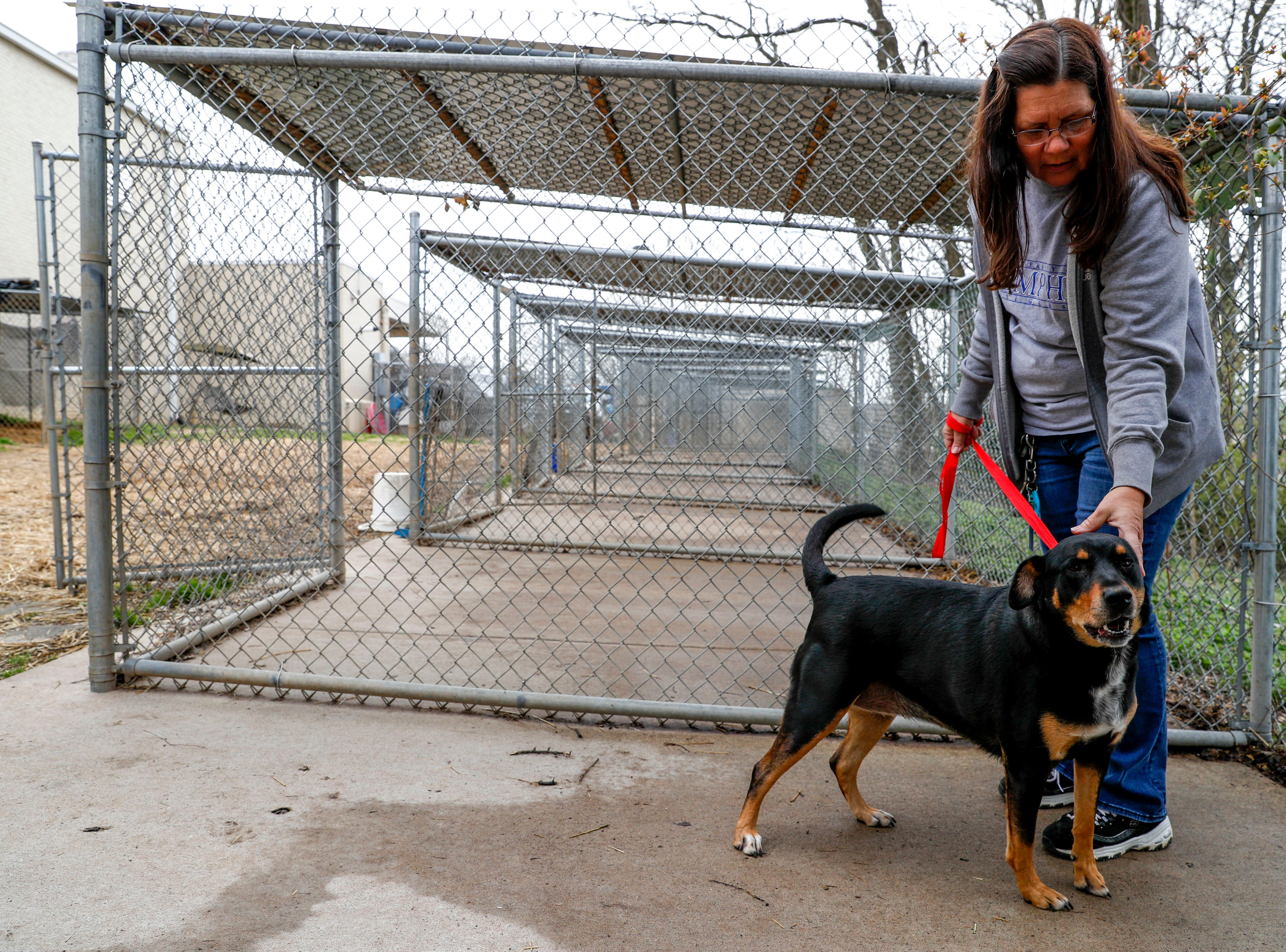 Lola, a Labrador retriever, plays with Lori Suiter on a visit outside at Montgomery County Animal Care and Control in Clarksville, Tenn., on Wednesday, March 13, 2019.