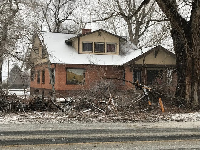 Some trees are down during Wednesday's storm in Windsor.