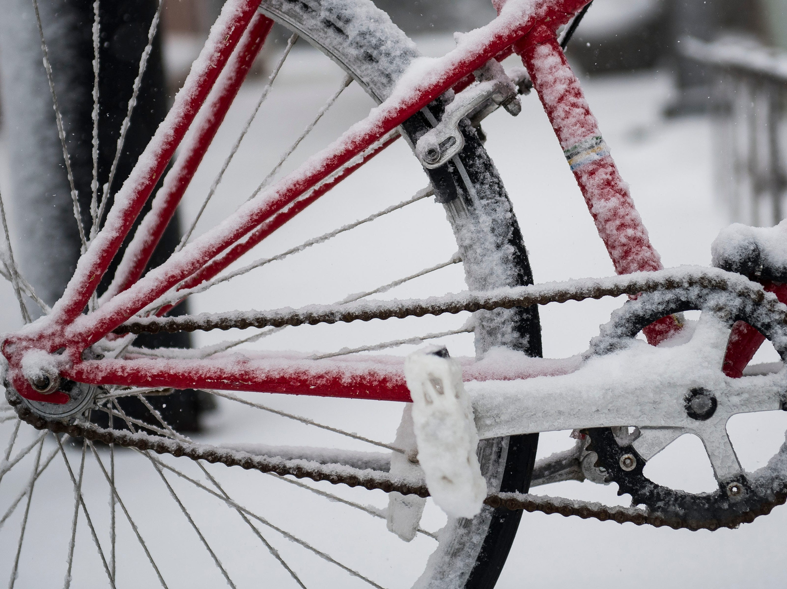 A bike collects snow in Old Town on Wednesday, March 13, 2019, in Fort Collins, Colo.