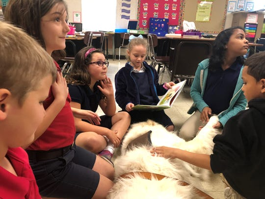 "Prairie Elementary second-graders read a book called ""Before You Were Mine"" to therapy dog Solomon, a 4-year-old Great Pyrenees with Pet Partners, Wednesday."