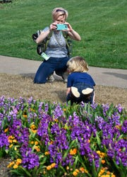Jennifer Kearney takes a photo of her fast-moving son Vincent in front of some of the blooming flowers at Cheekwood Wednesday, March 13, 2019, in Nashville, Tenn.