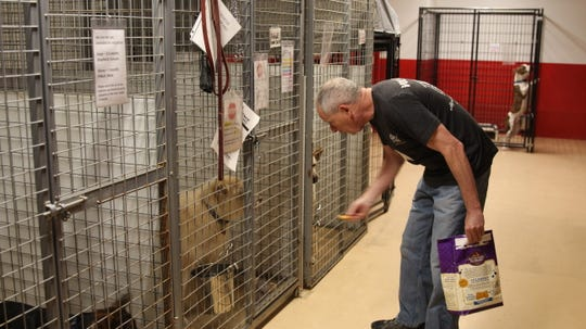 "Home ""Fur"" Good volunteer Matthew Weil feeds Kobuk, an adoptable dog, a treat."