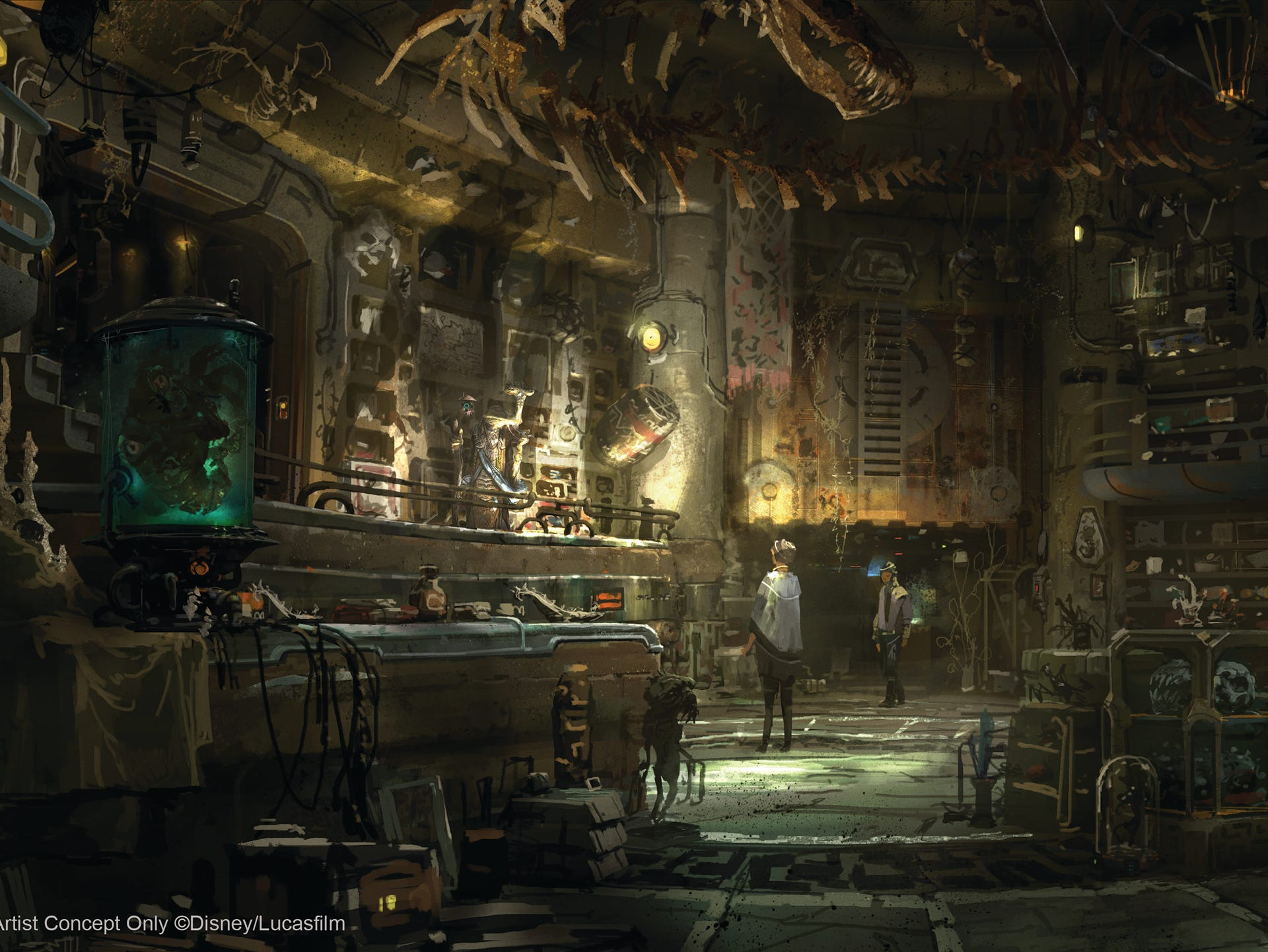 Dok-Ondar's Den of Antiquities in Star Wars: Galaxy's Edge will feature rare items from across the galaxy for sale, all part of Dok-Ondar's collection. Items will represent different eras of the Star Wars galaxy, including holocrons, ancient Jedi and Sith artifacts, lightsabers and more.