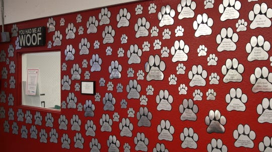 """The donation wall in the entrance of Home """"Fur"""" Good displays signs about pets whose owners donated in their memory."""