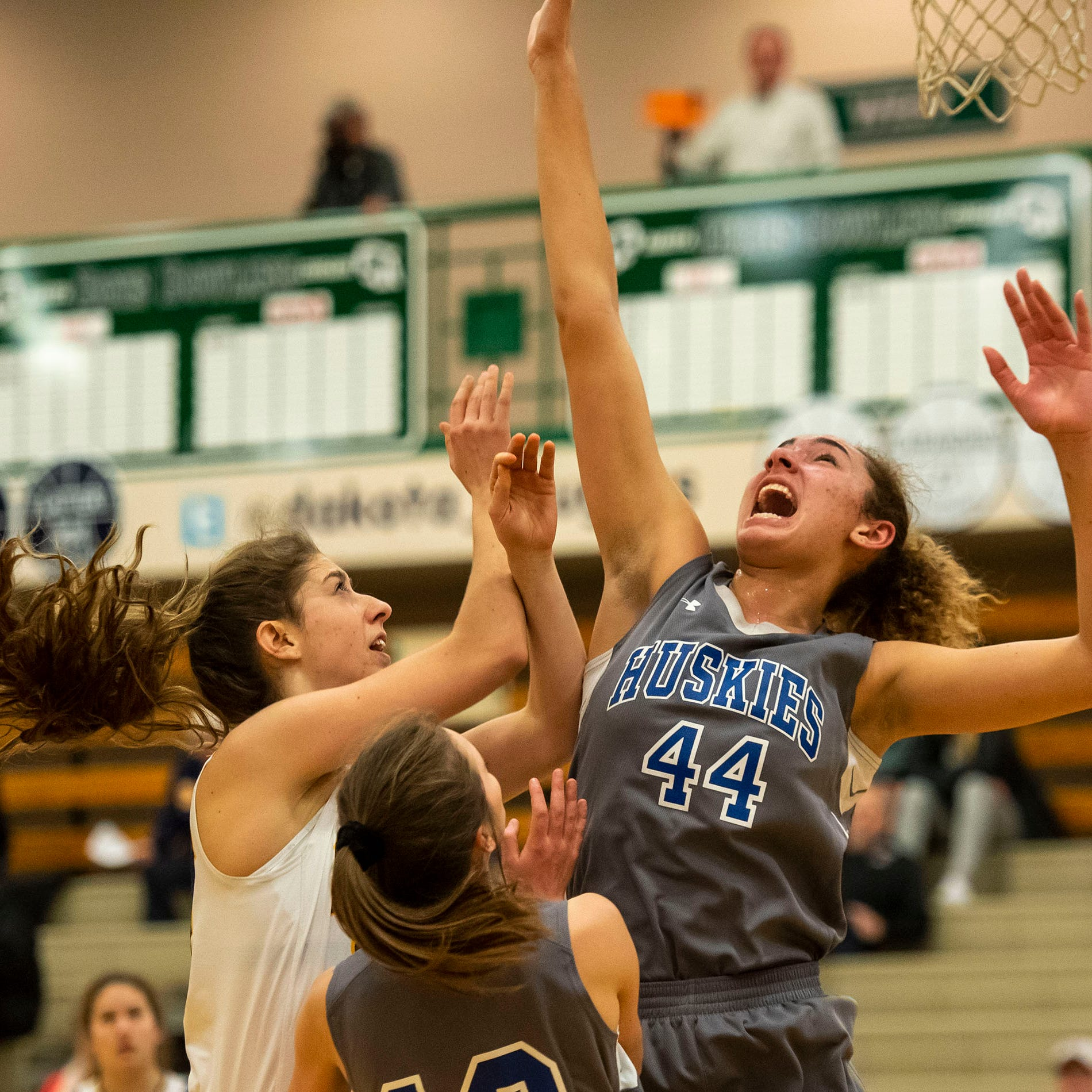 Regional Basketball: Lakeview holds off PHN, 46-37