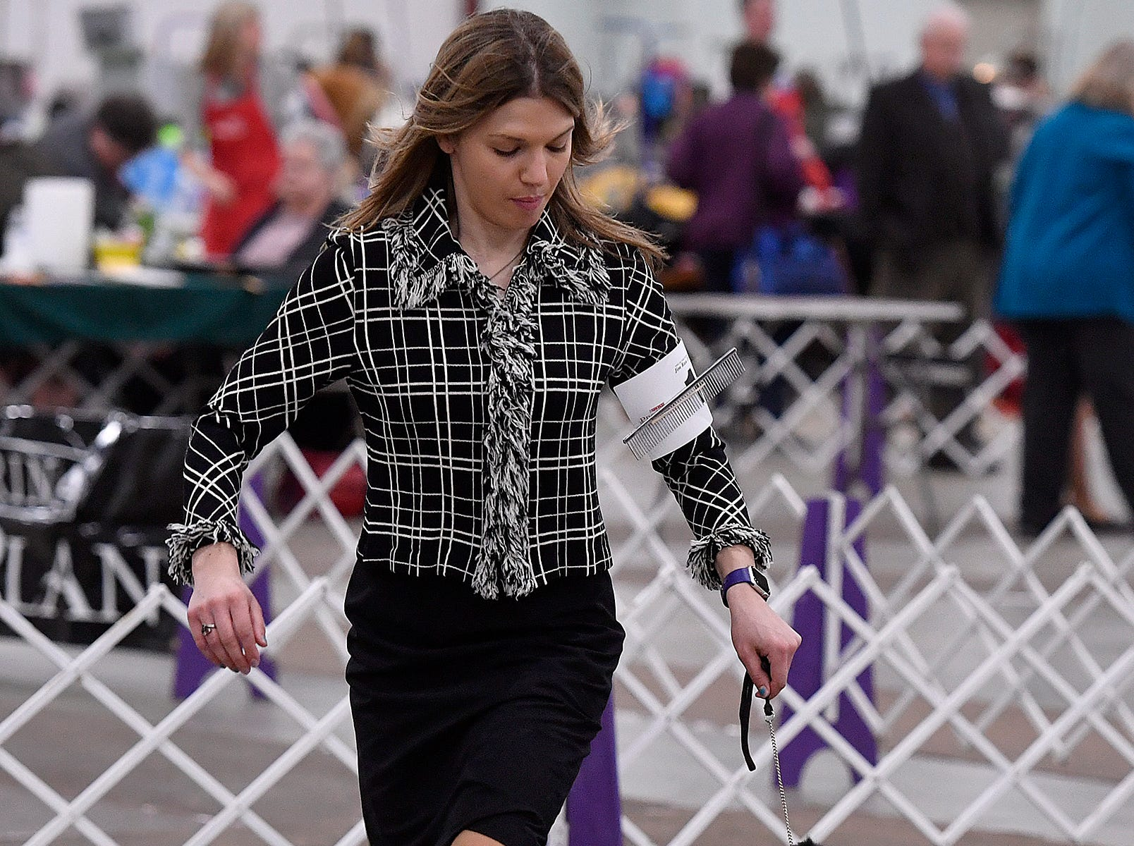 The York Kennel Club, Lancaster Kennel Club and Delaware Valley Kennel Club host the annual Celtic Classic Dog Show, Wednesday, March 13, 2018.John A. Pavoncello photo