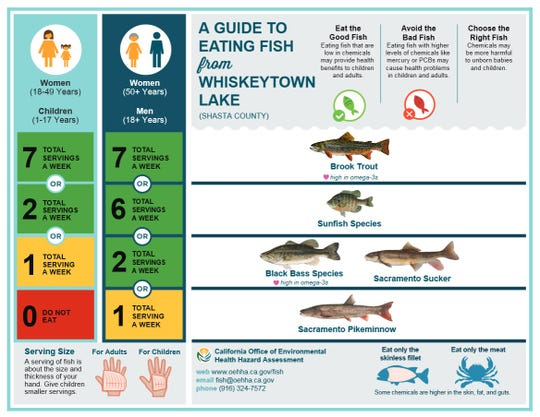 Fish-eating guide