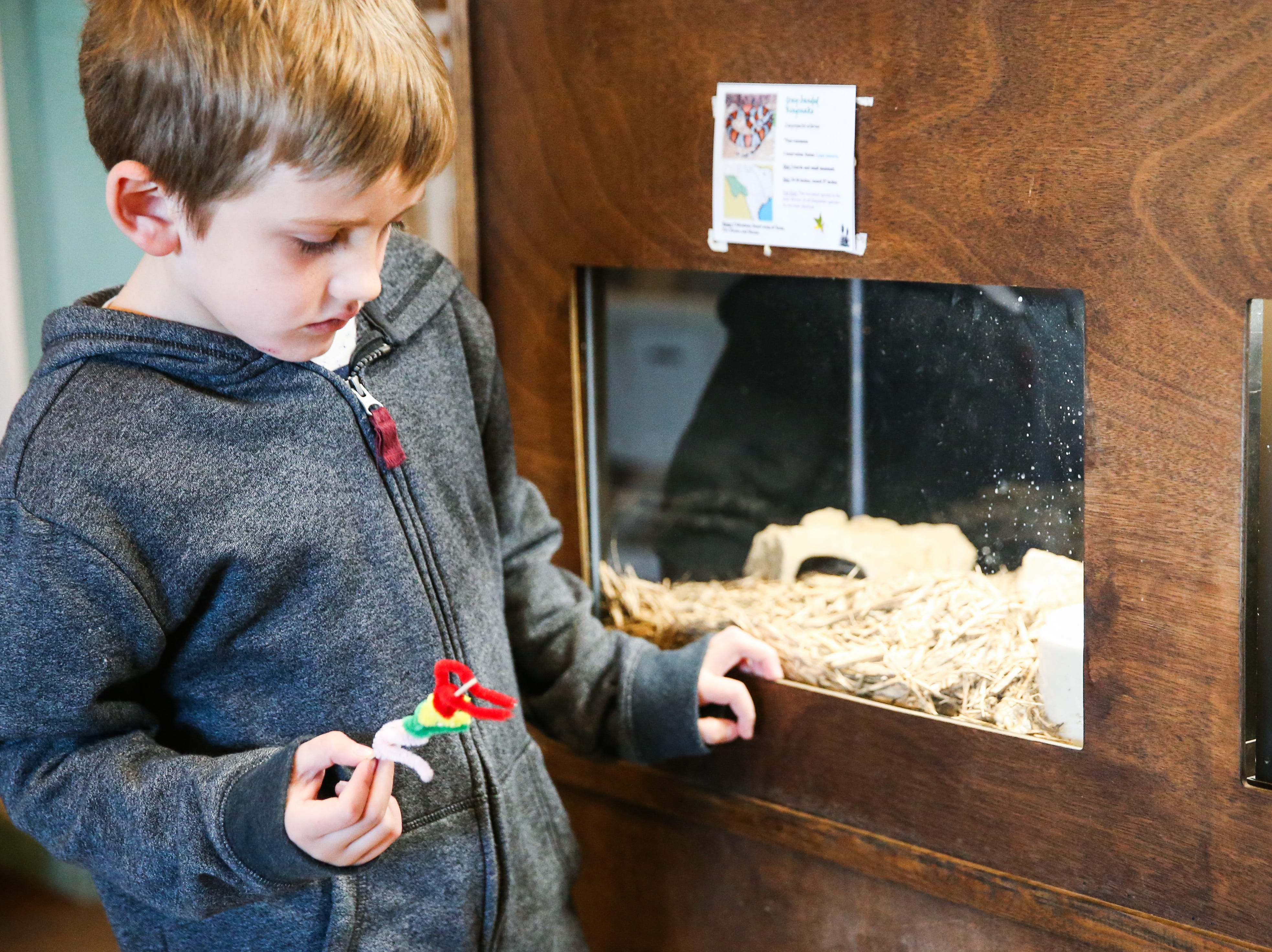 Hudson Jetton looks at the snakes during spring break camp Wednesday, March 13, 2019, at San Angelo Nature Center.