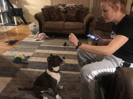 Chelsea Russell rewards her dog Spock with a treat Wednesday, March 13, 2019.