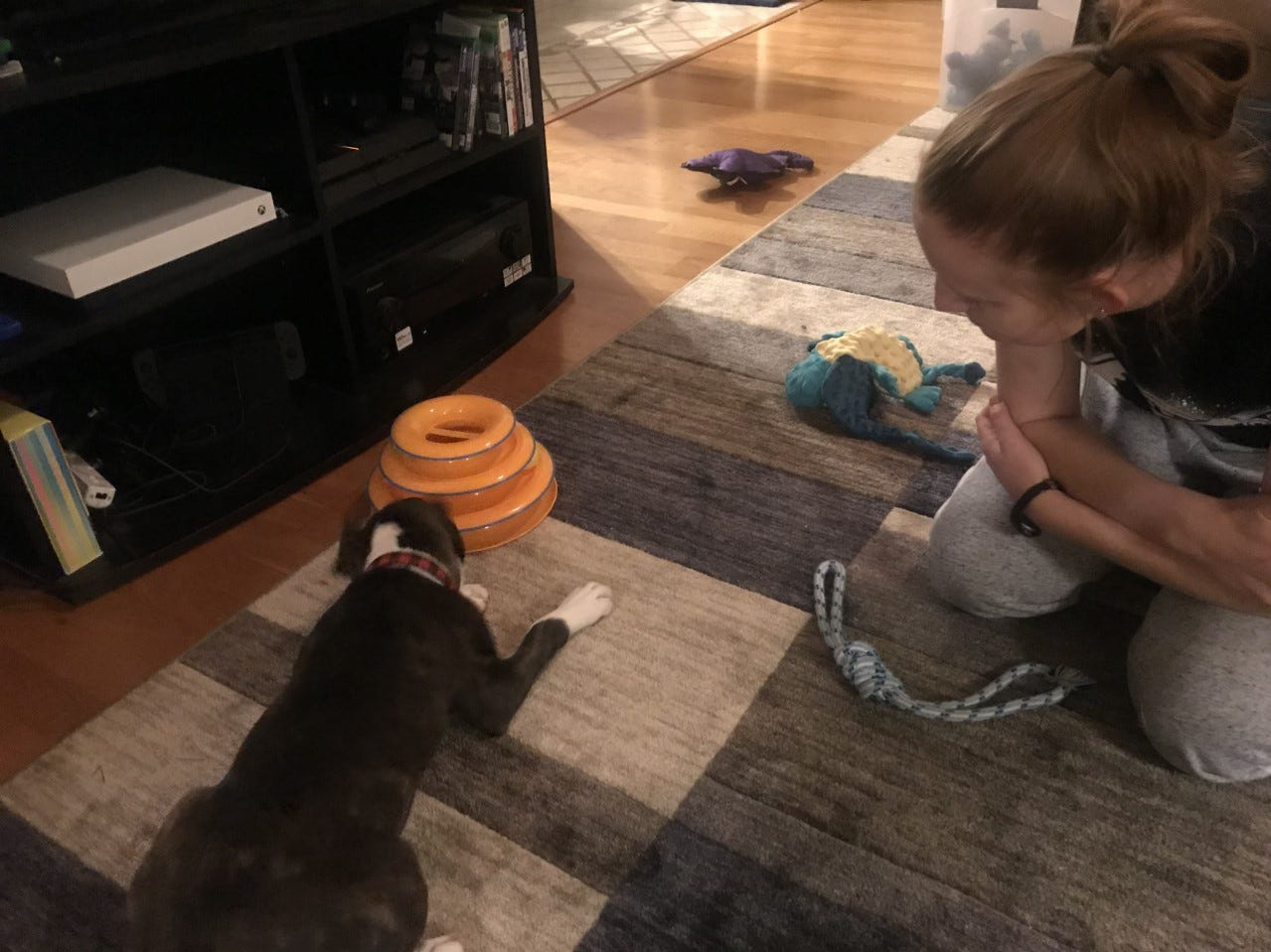 Chelsea Russell watches her new dog Spock play with a toy Wednesday, March 13, 2019.